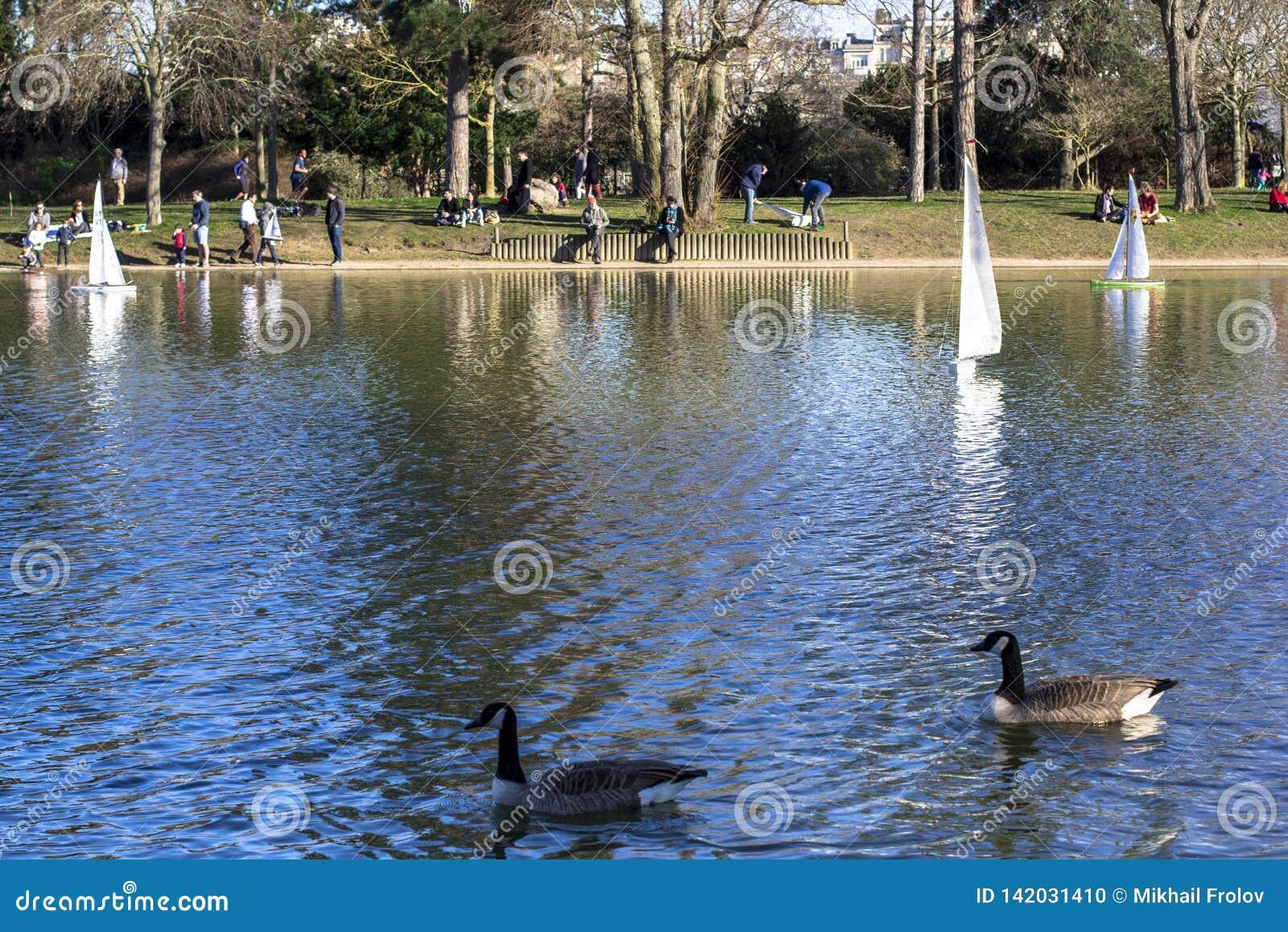Veleros modelo en una charca en un parque en París Los pájaros vuelan, los padres caminan con los niños, gansos en una charca