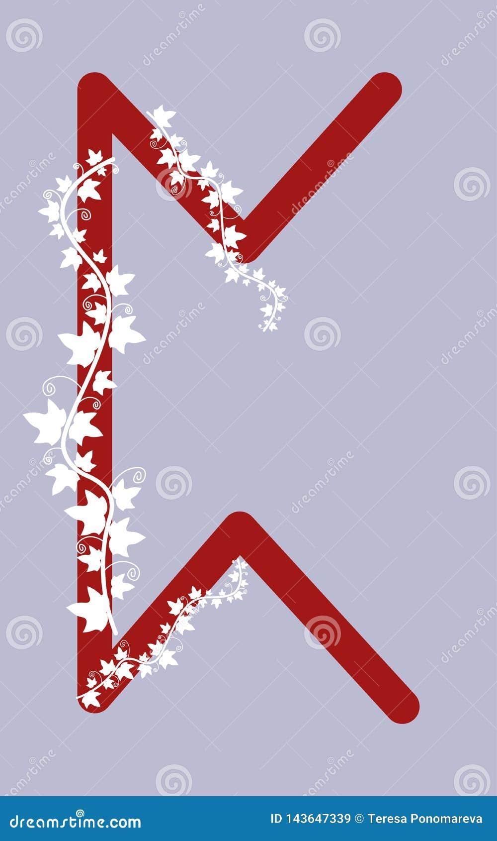 Velo Perth, o velo escandinavo antigo Ilustração do vetor A letra do futarka superior Tema erval, runas da runa da hera