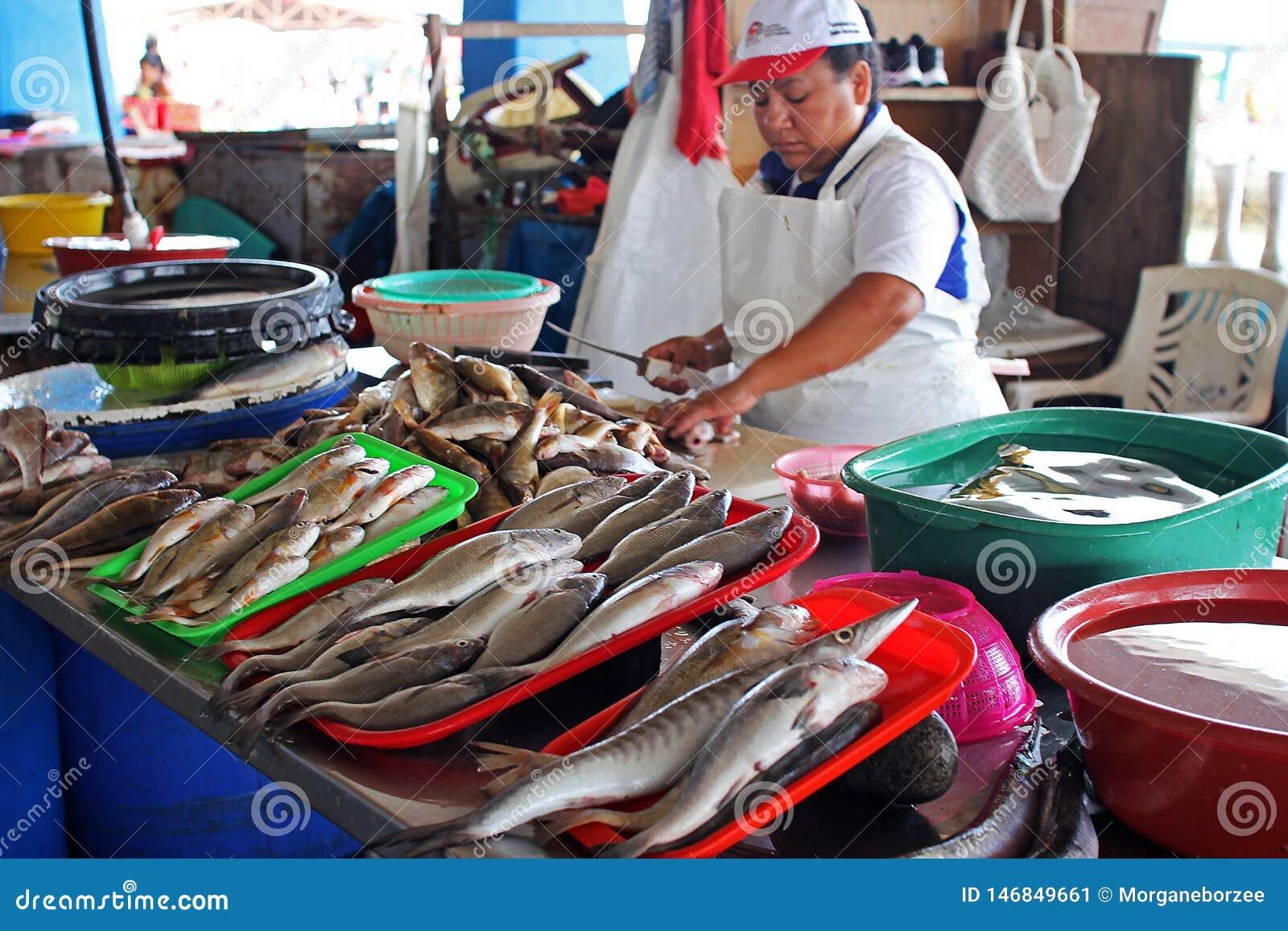 Vendedor peruano fêmea em um mercado do marisco dos peixes