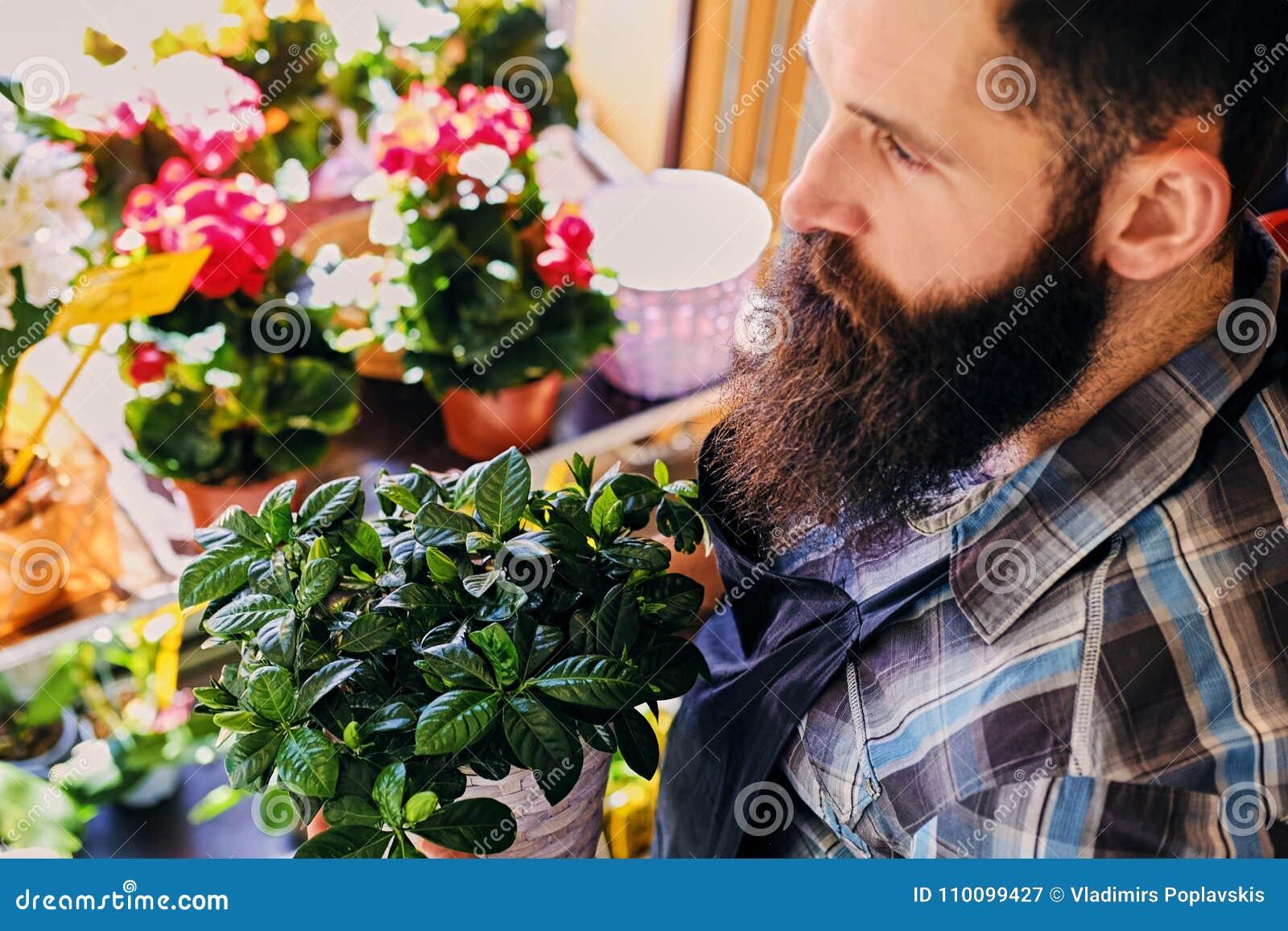 Vendeur barbu brutal de fleur avec des tatouages sur ses bras dans un flowe