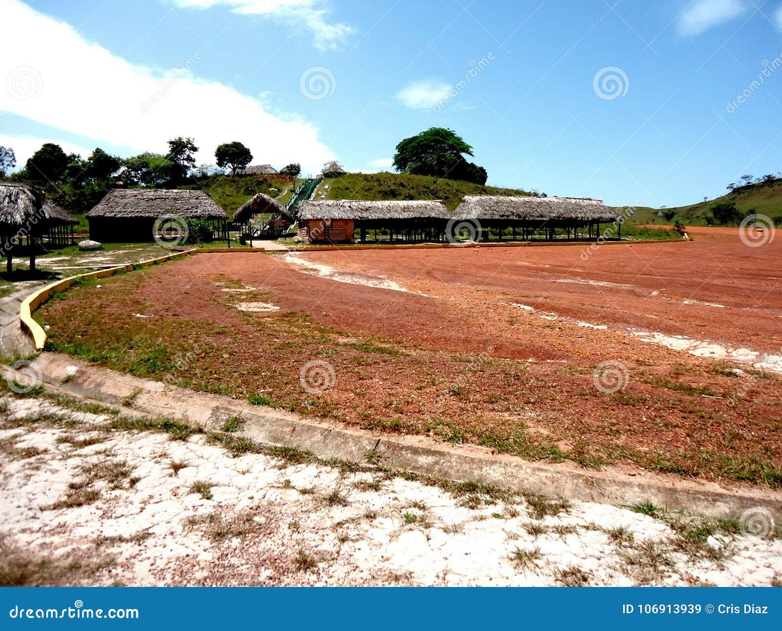 Venezuela de amazon do savana do parque das cabanas da paisagem grande