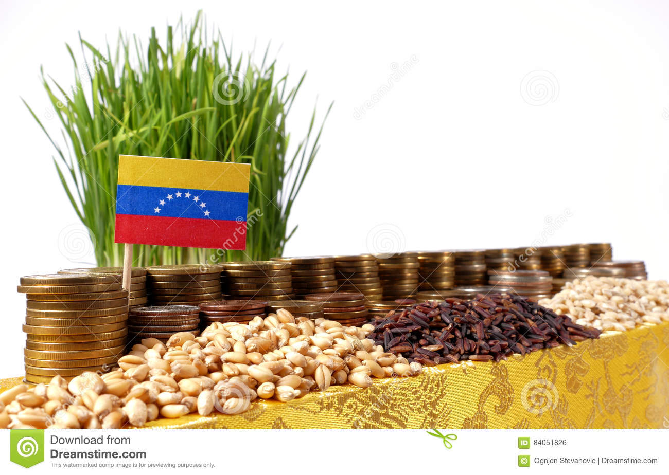 Venezuela flag waving with stack of money coins and piles of wheat