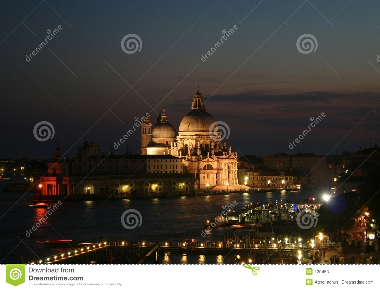 Venice at night panorama