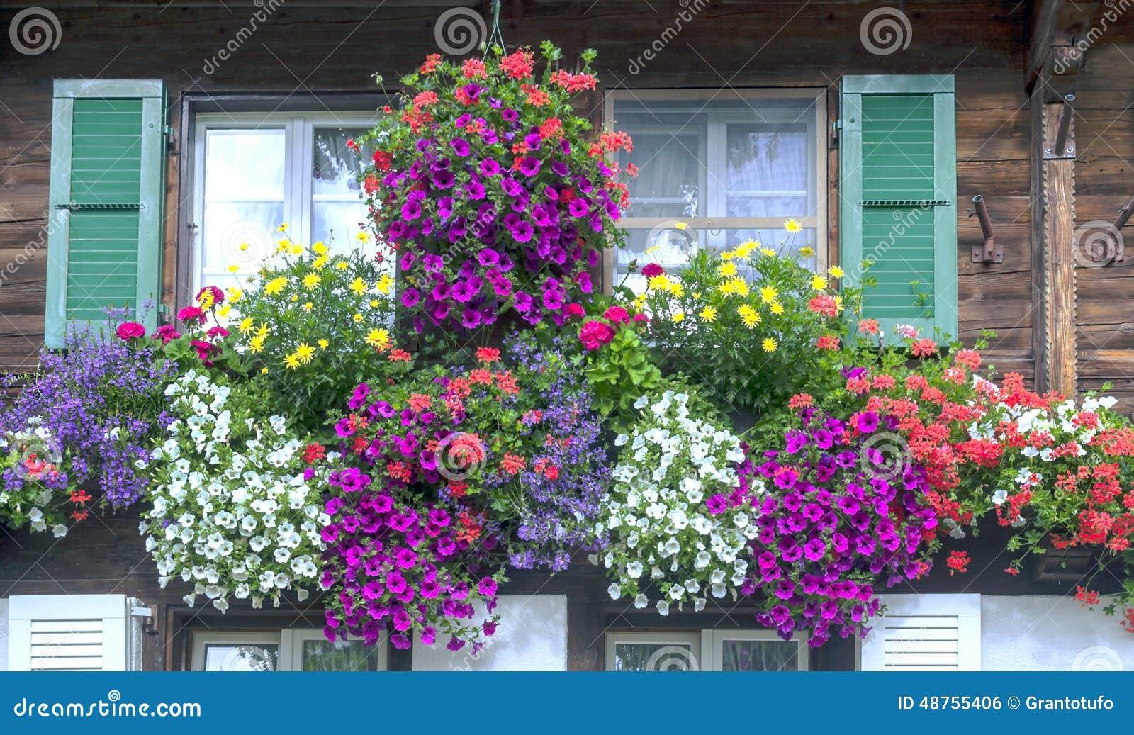 Vensters met bloemen
