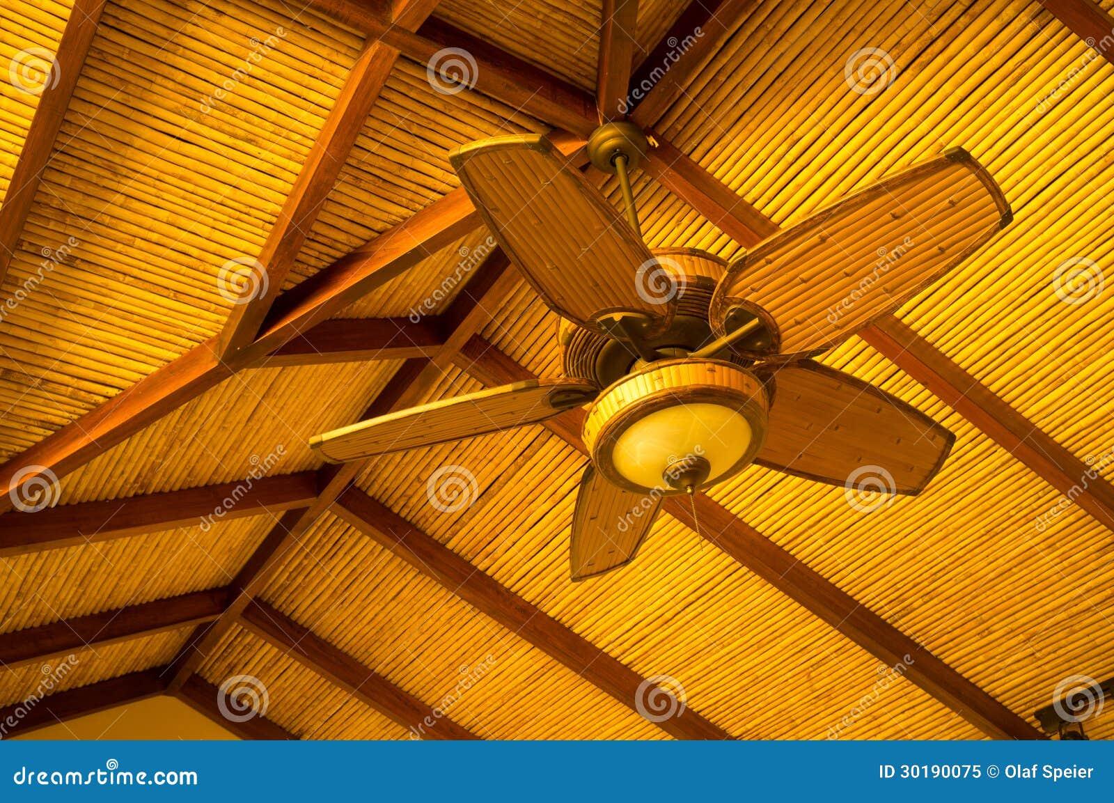 Ventilateur de plafond photo libre de droits image 30190075 - Ventilateur de plafond colonial ...