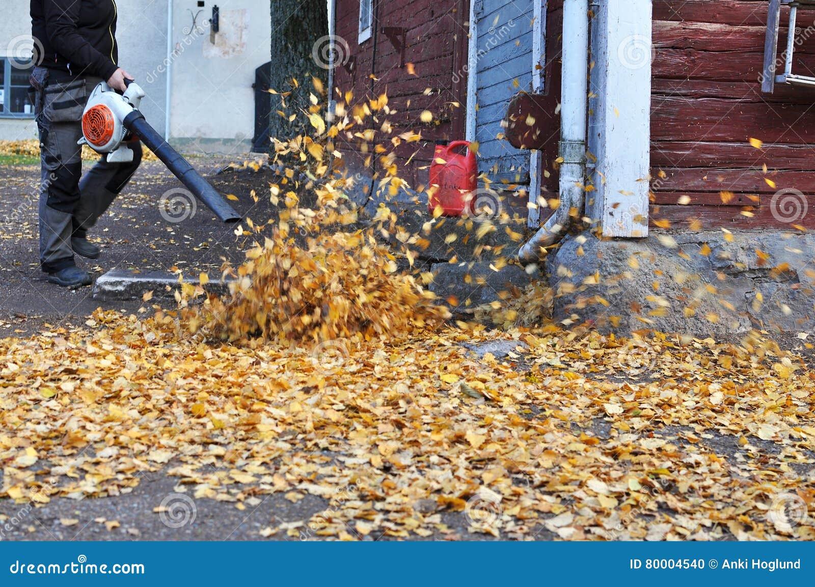 Ventilatore di foglia in autunno