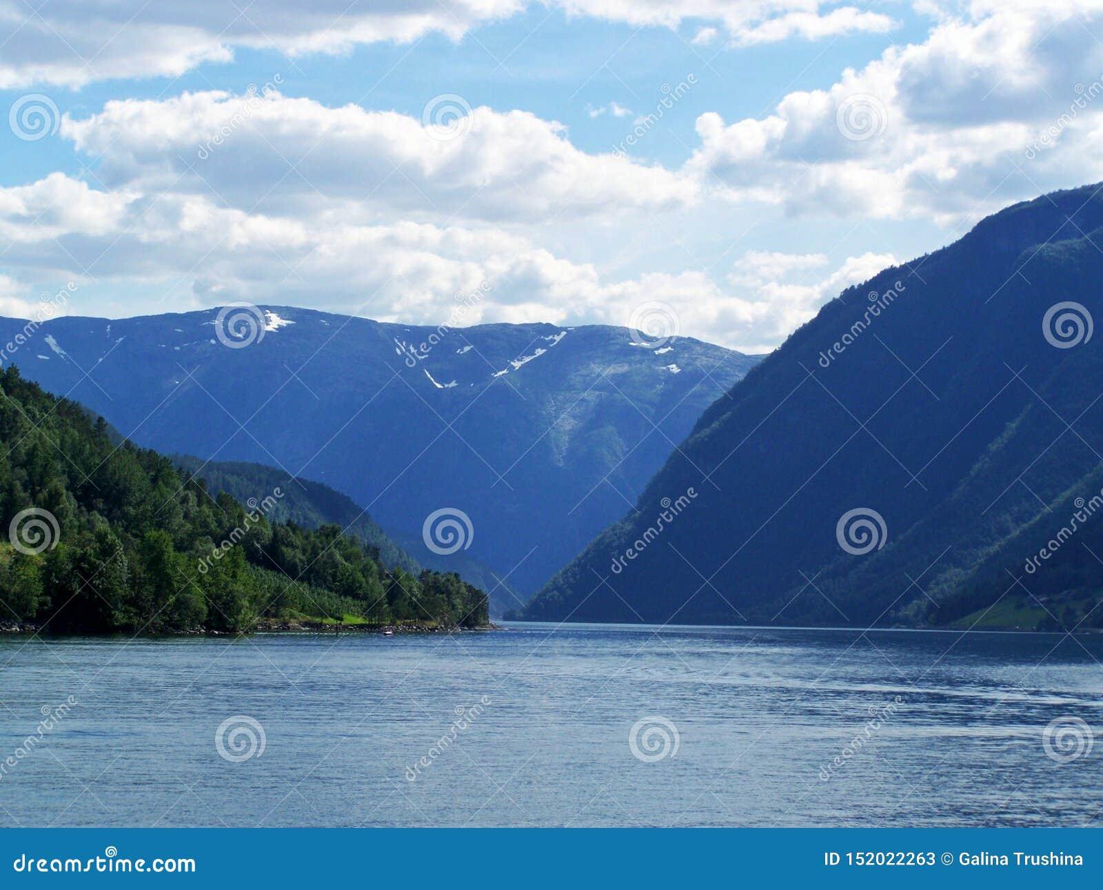 Verão de Noruega da natureza Água, fiorde da floresta em um dia ensolarado