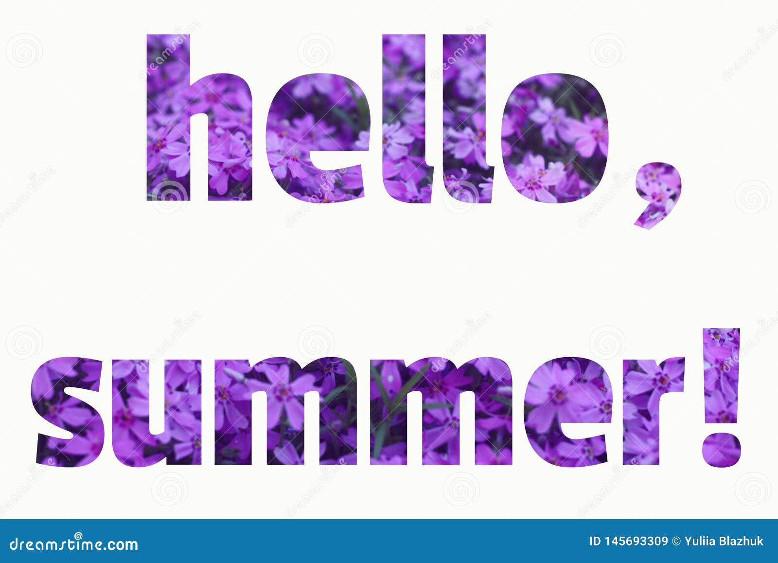 VERÃO do texto OLÁ! feito do fundo roxo das flores do verão
