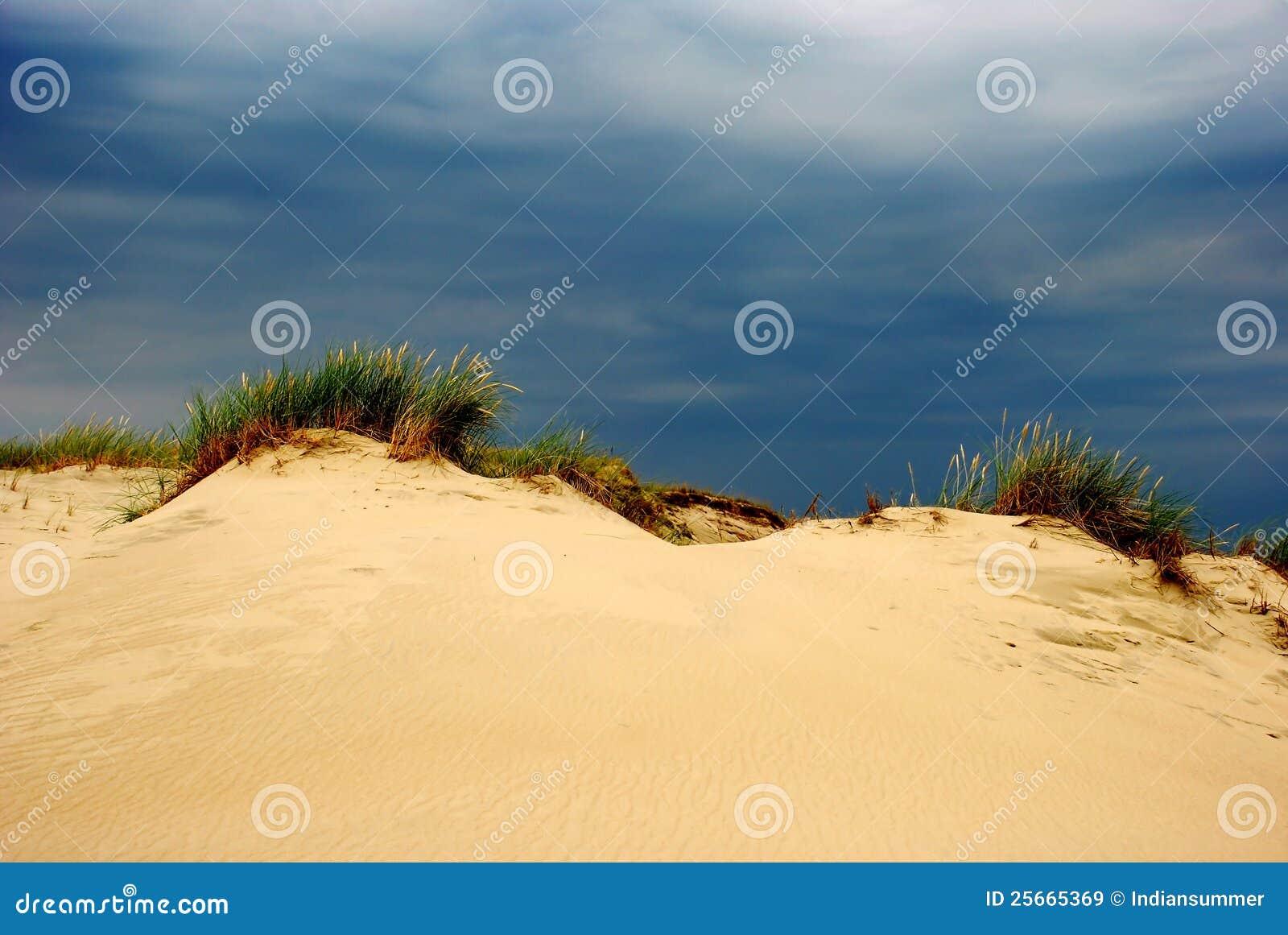 Verão nas dunas