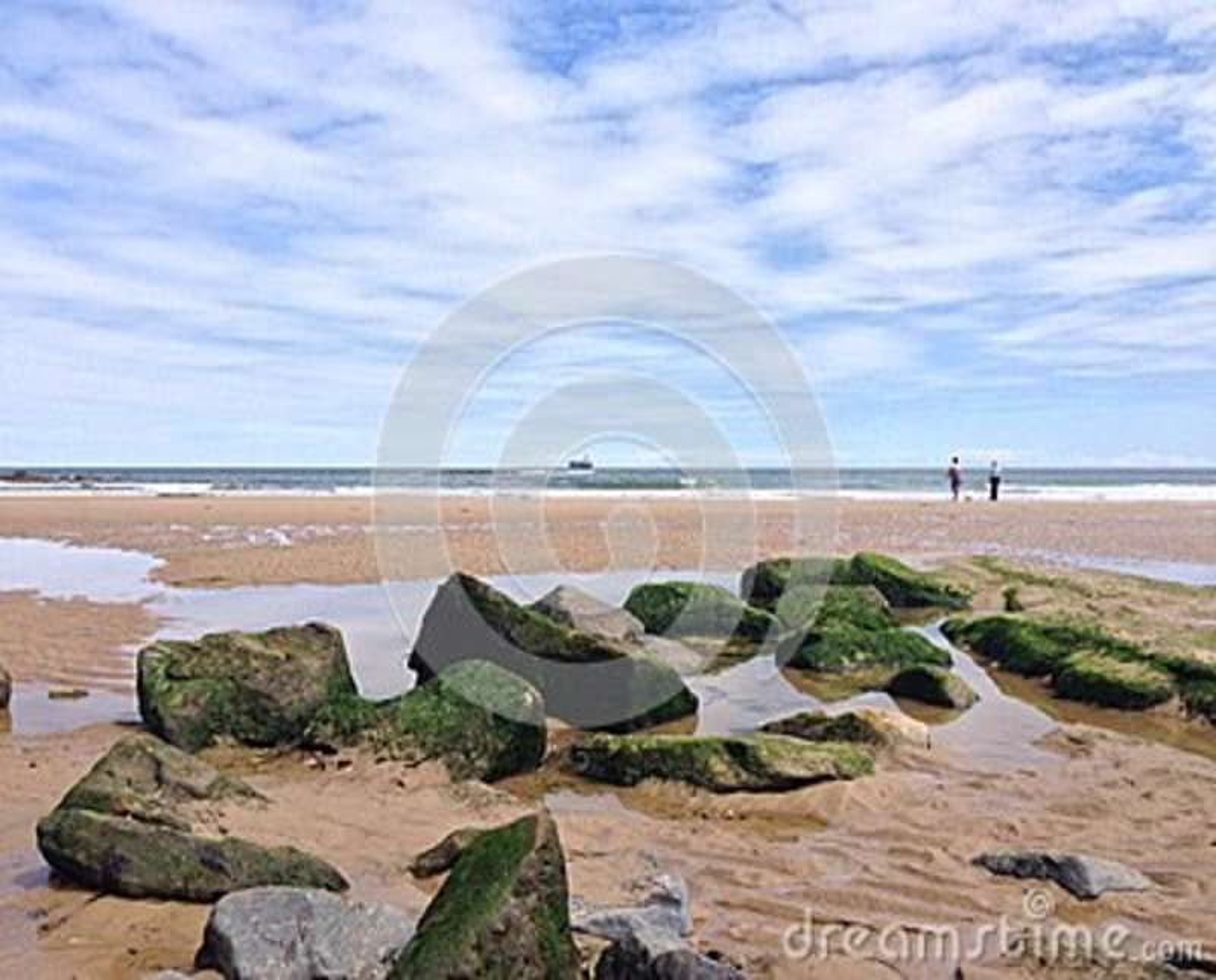 Verano de la playa del tynemouth