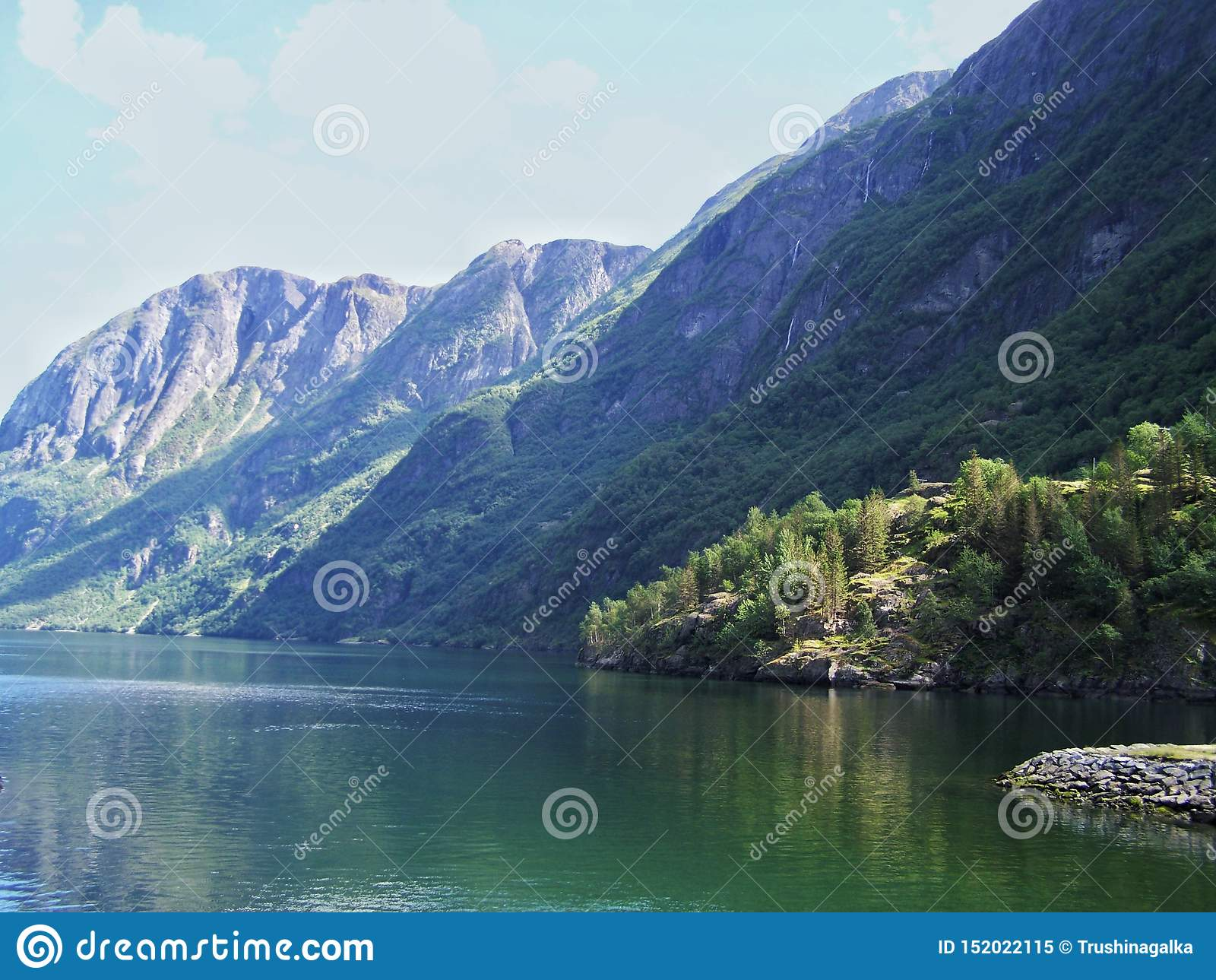 Verano de Noruega de la naturaleza Agua, fiordo del bosque en un día soleado