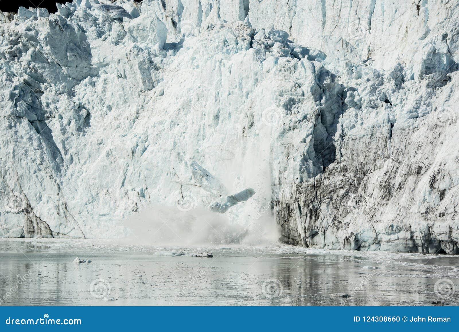 Verano en parque nacional del Glacier Bay