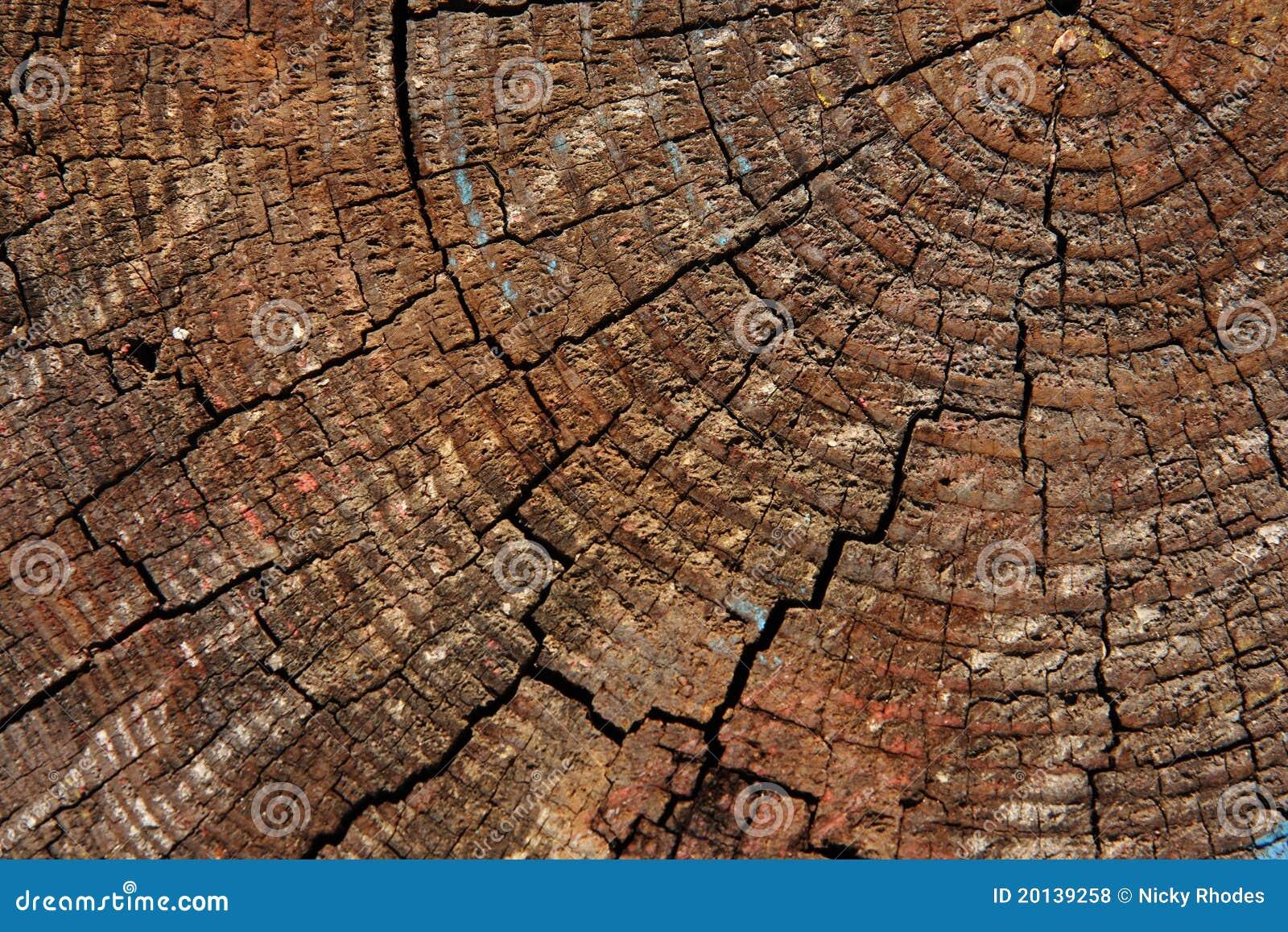 Verblassenes Nahaufnahmeholz
