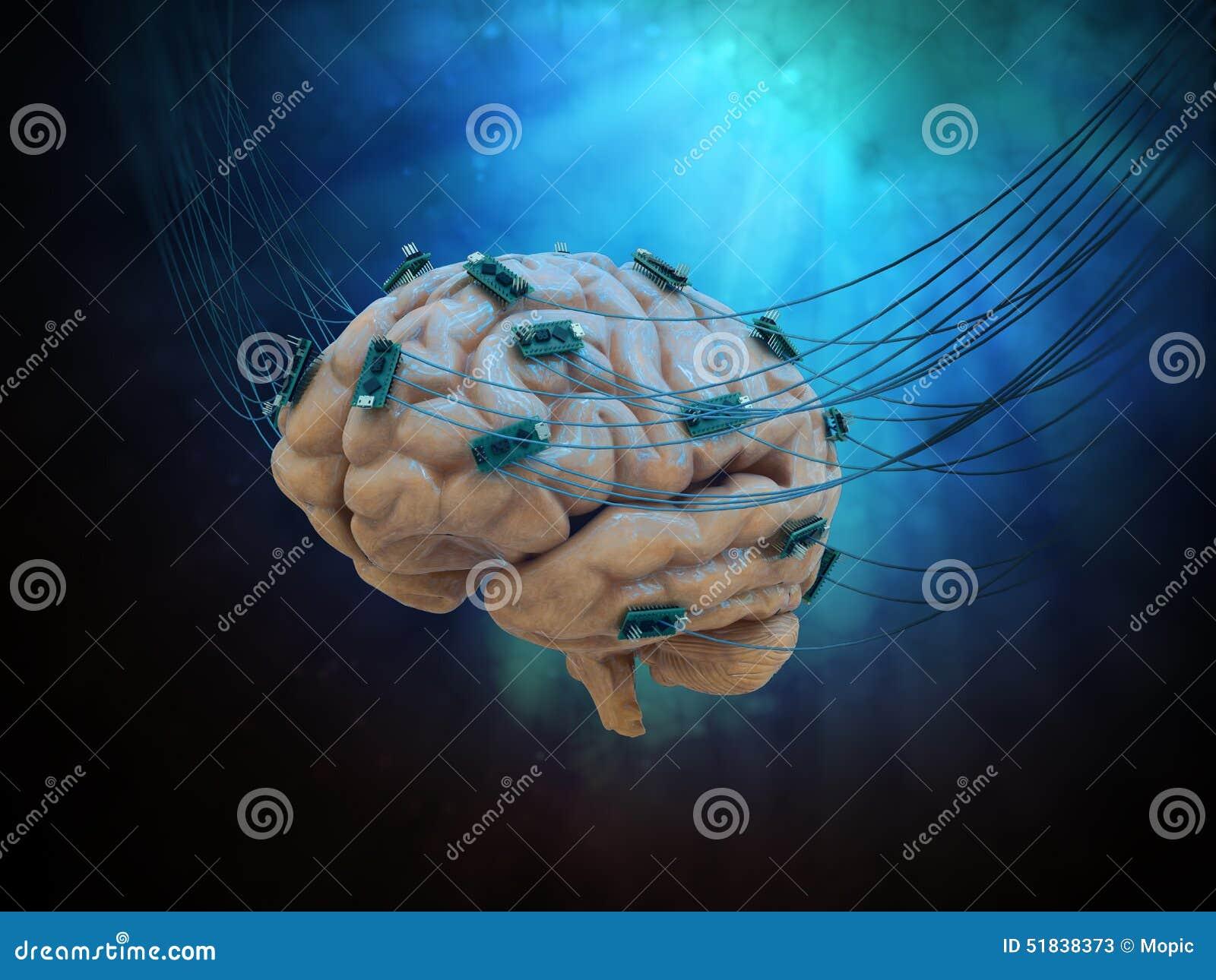 Verbonden hersenen