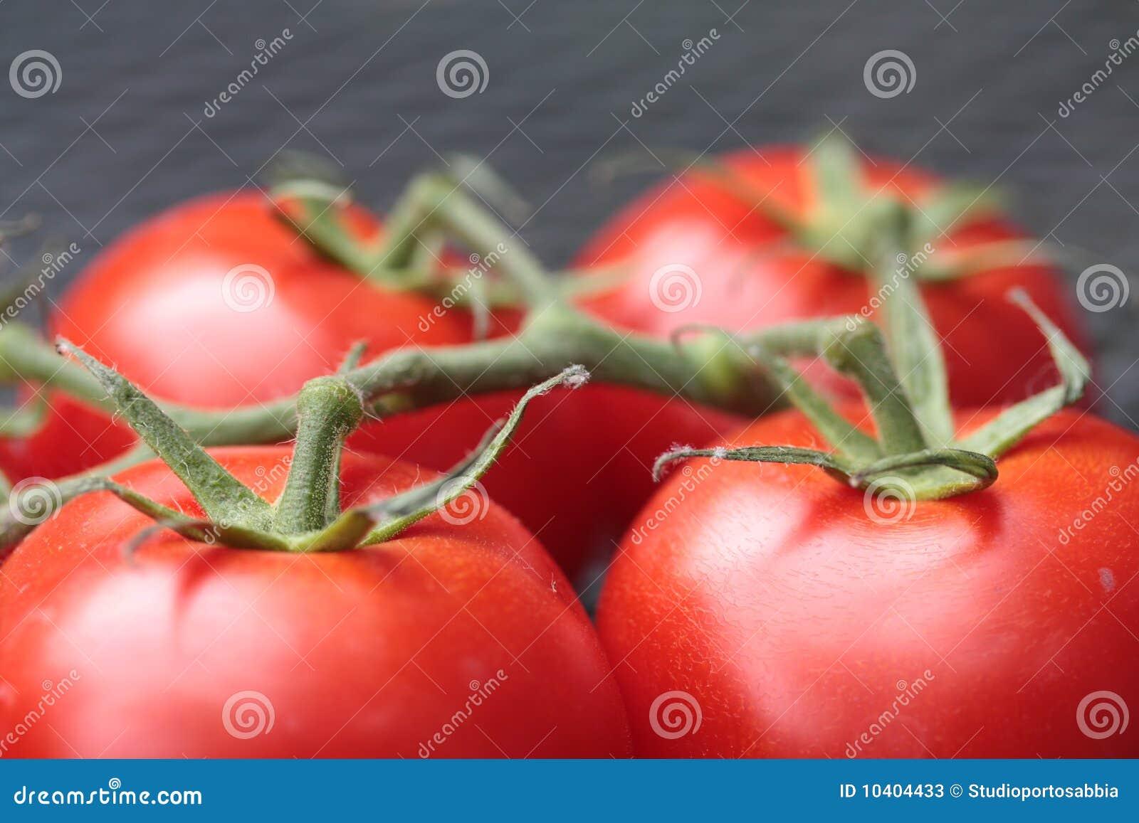 Verbonden tomaten