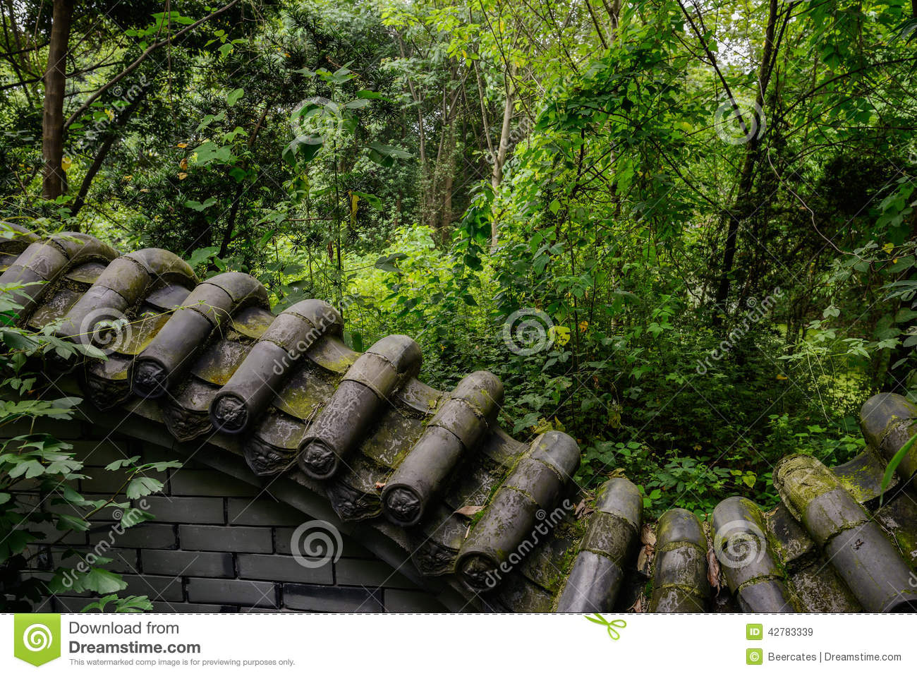 Verdant woods outside enclosure in ancient style stock for Wood in chinese