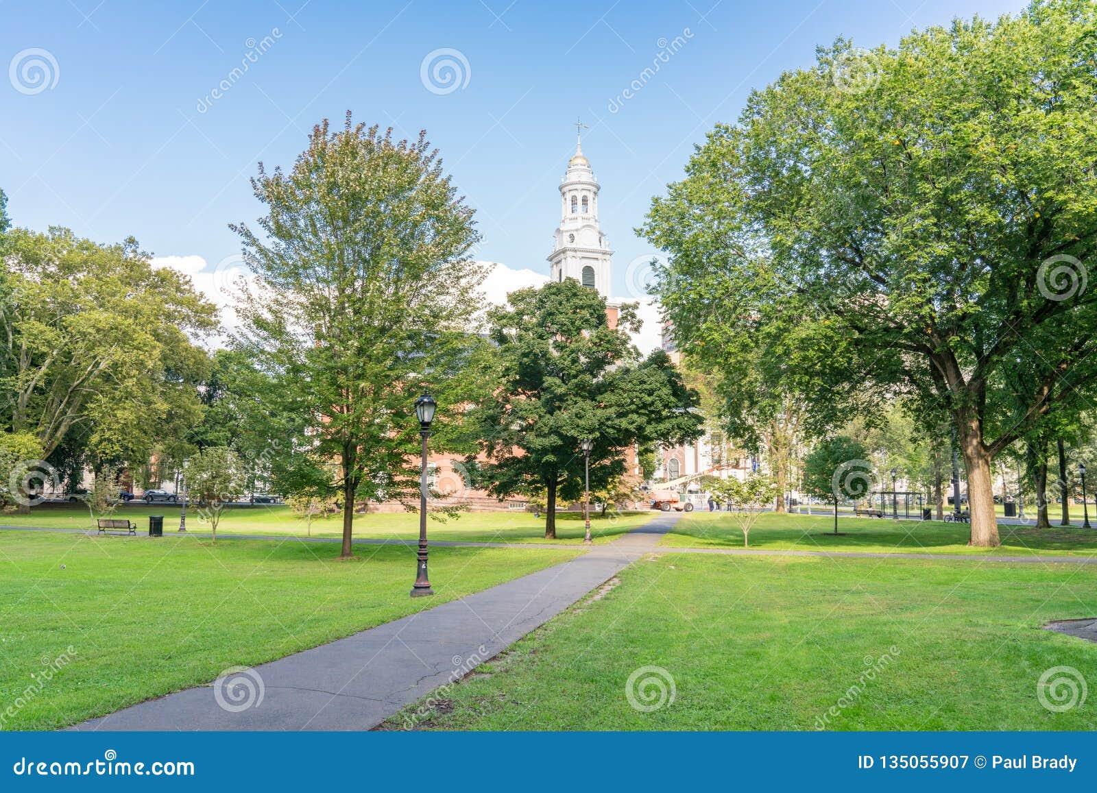 Verde de New Haven