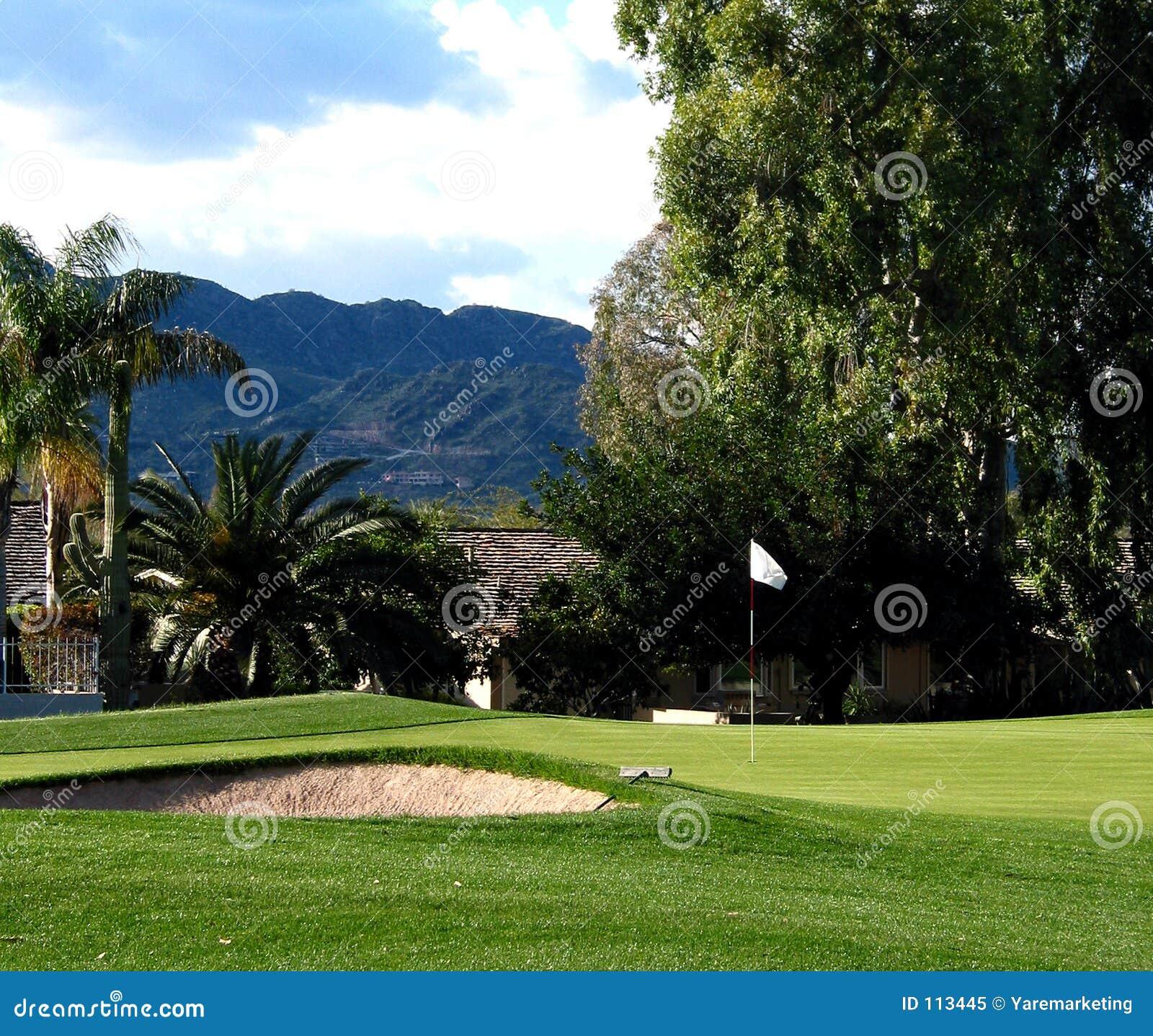 Verde do golfe