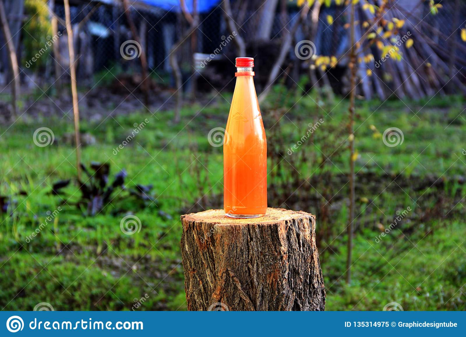 Verde natural de la botella de la bebida de la salmuera de la uva
