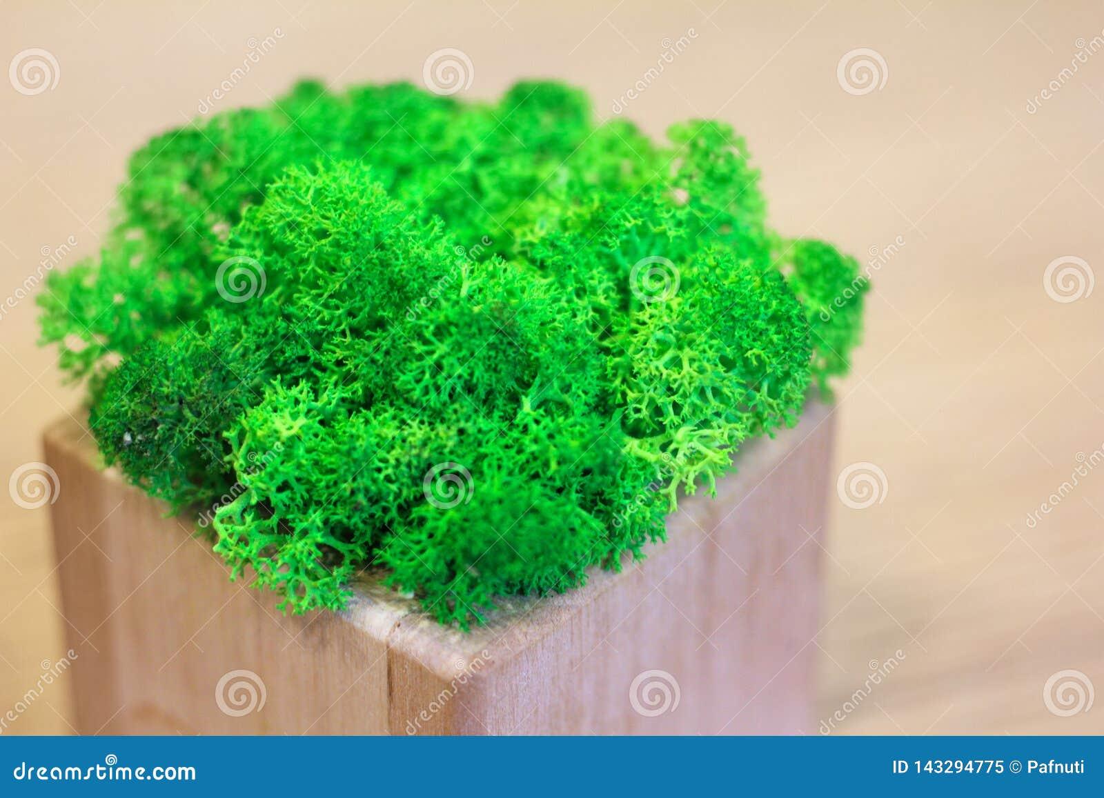 Verdes em uma decoração de madeira da tabela