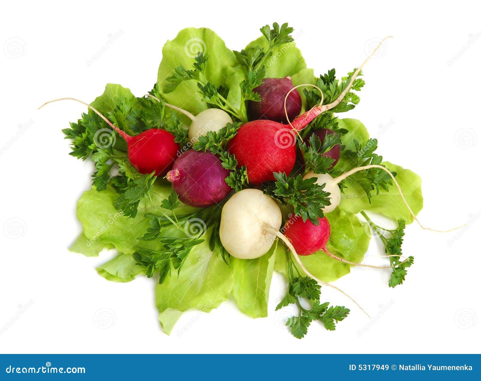 Download Verdi Saporiti Freschi E Ravanello Immagine Stock - Immagine di foodstuff, pranzo: 5317949