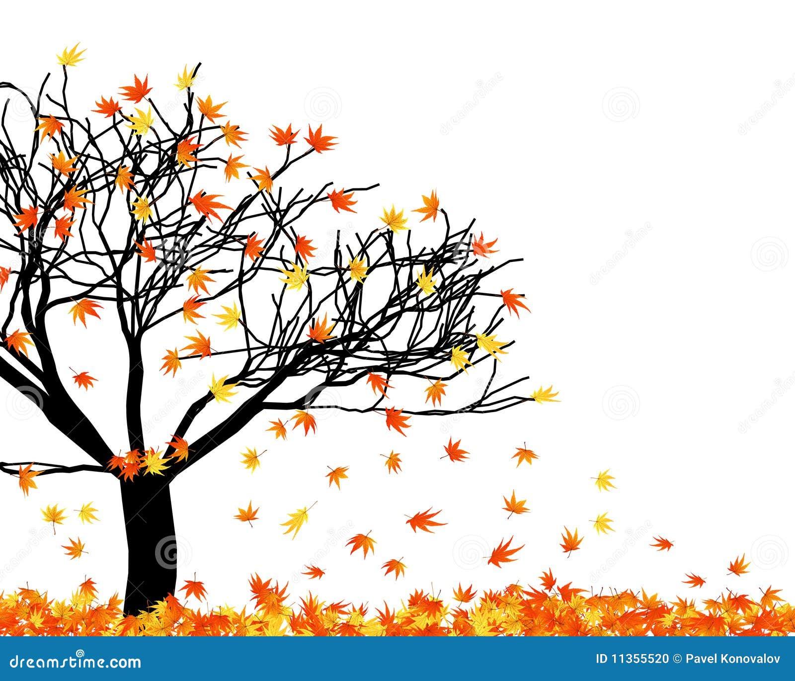 Verdrehte Blätter
