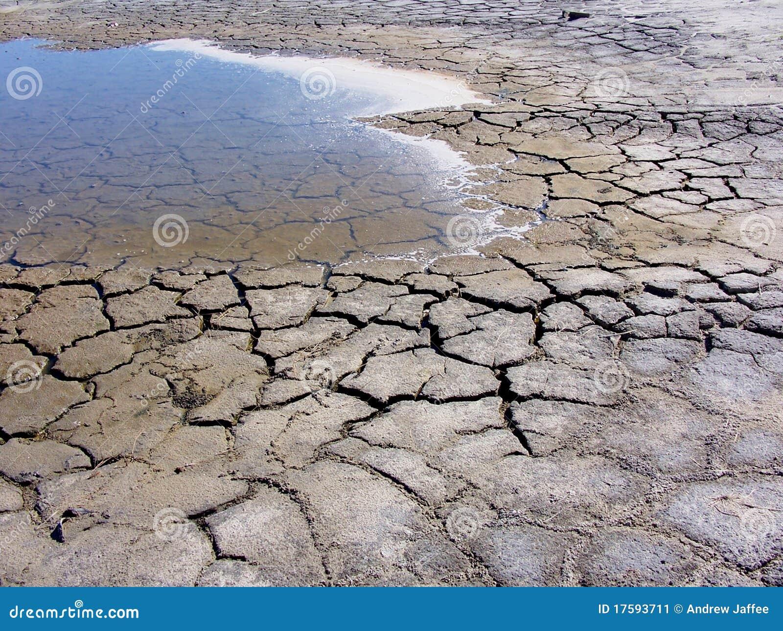 Anspruchsvoll Pool Salzwasser Sammlung Von P