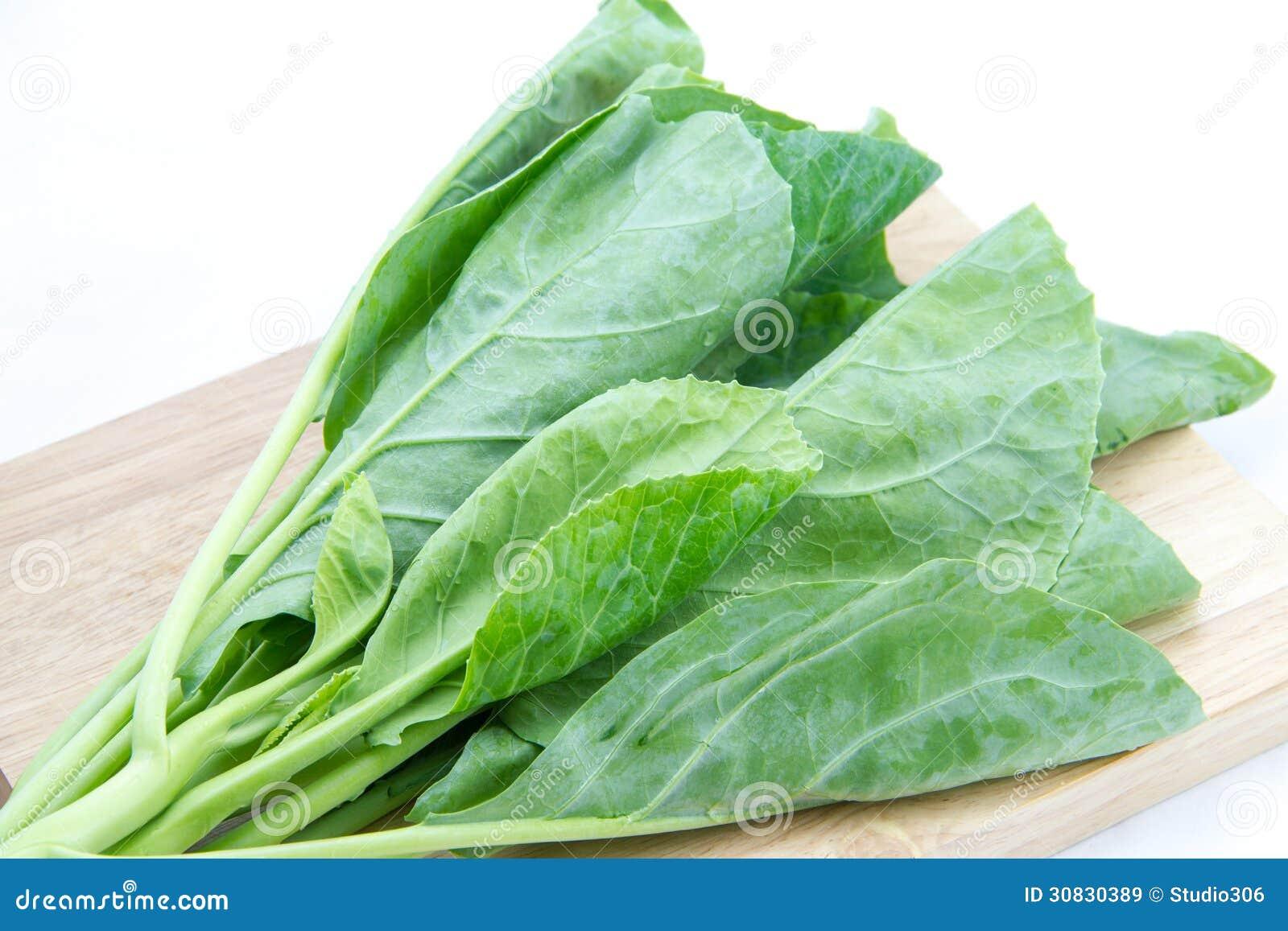 Verdura del cavolo