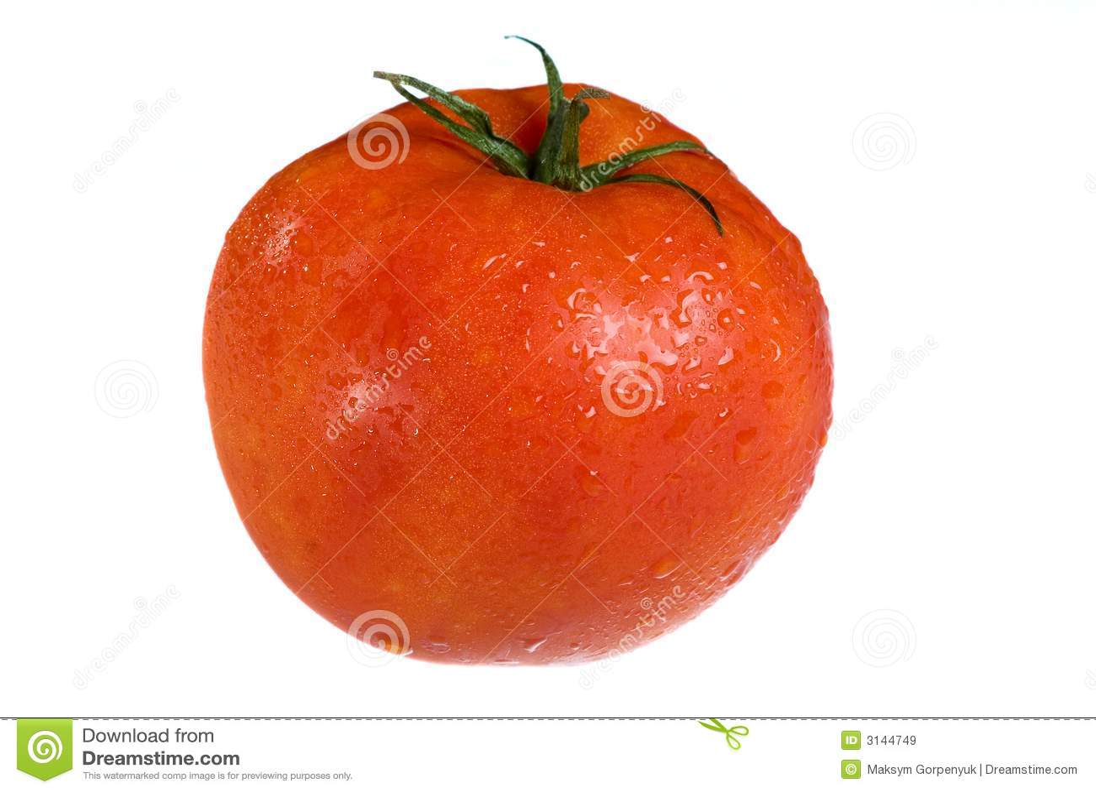 Verdura del pomodoro