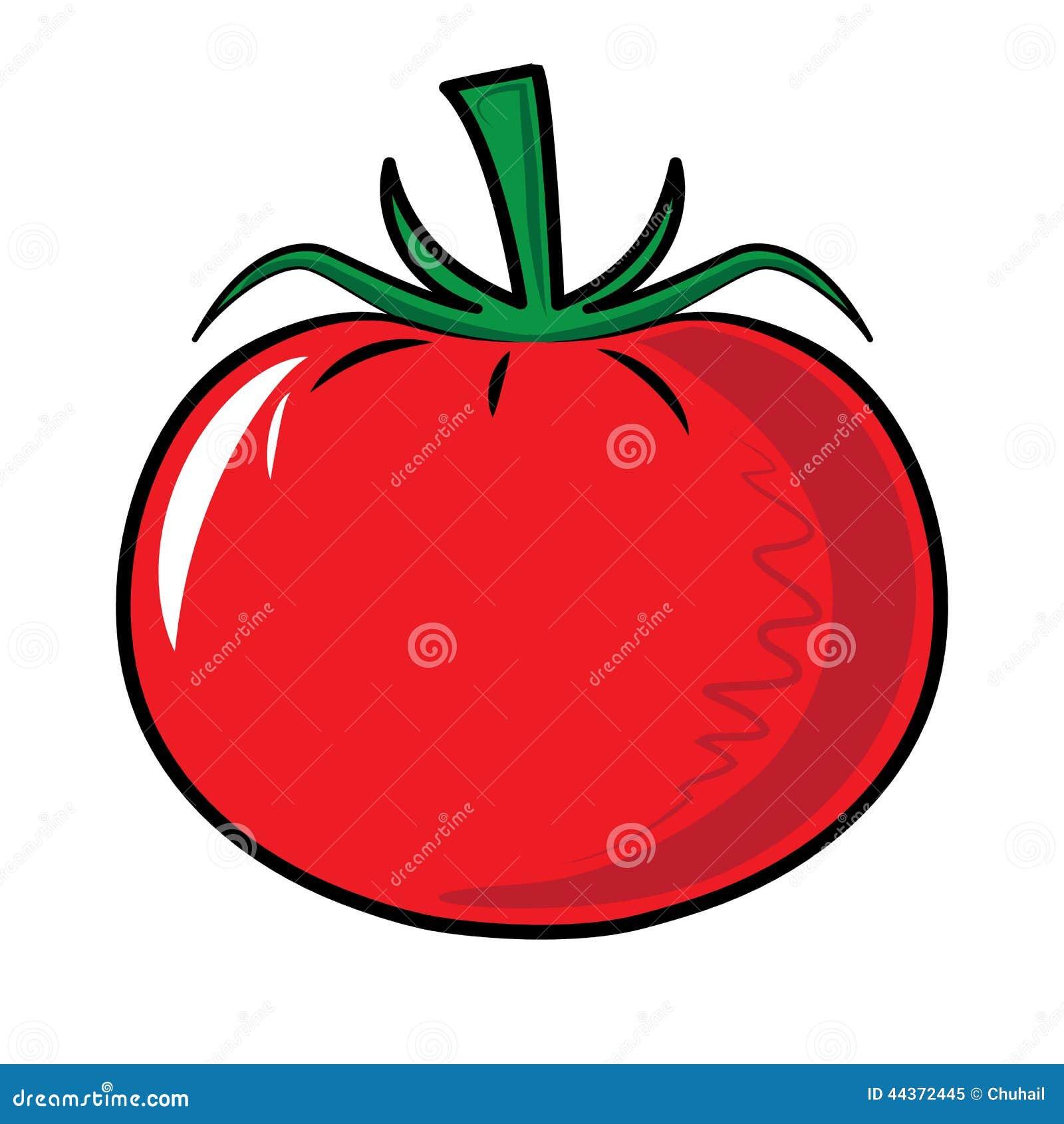 Verdura rossa del pomodoro isolata su bianco