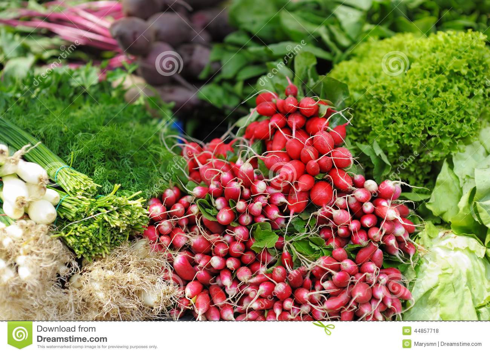 Verduras e hierbas clasificadas frescas