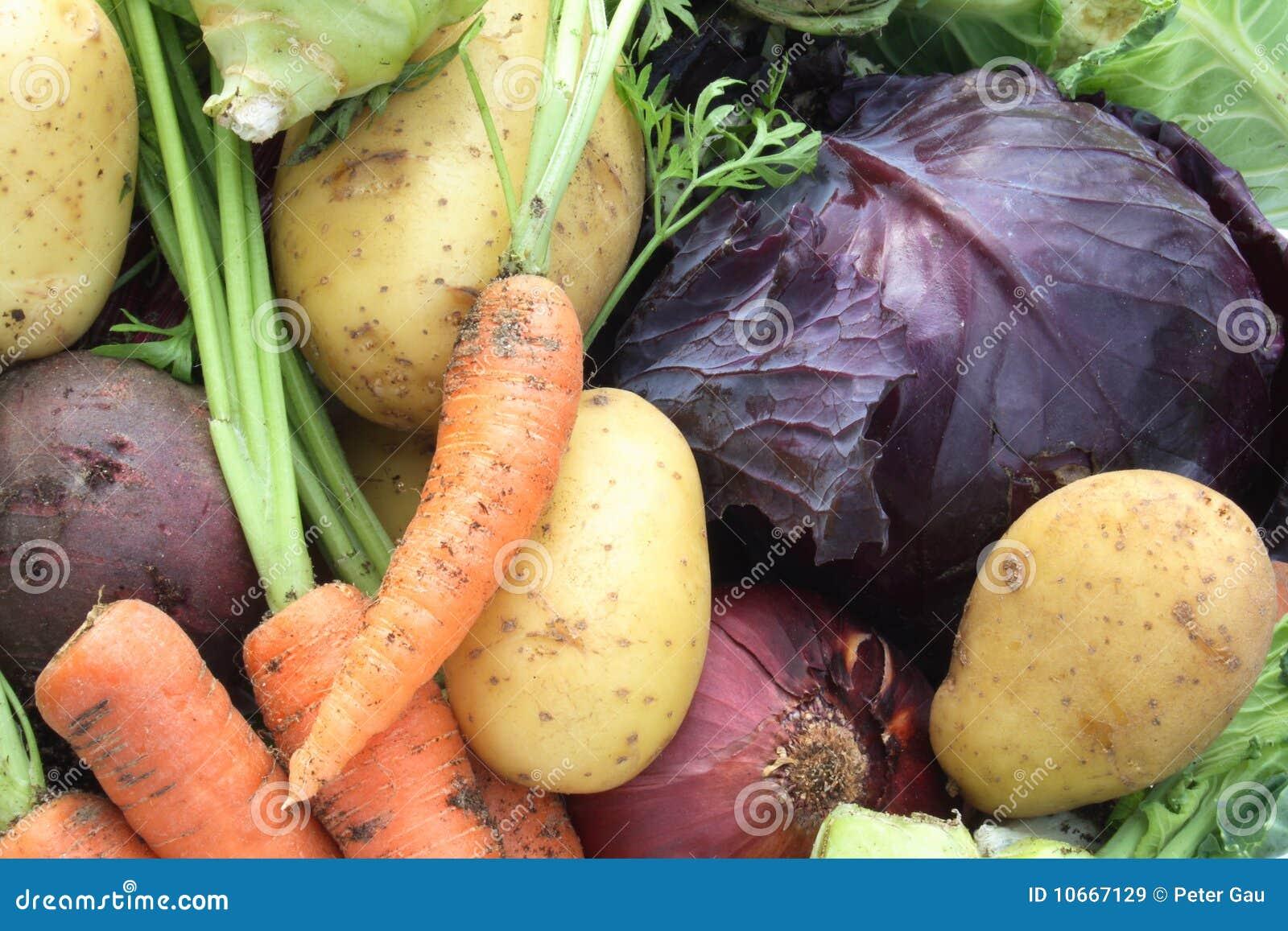 Verdure organiche