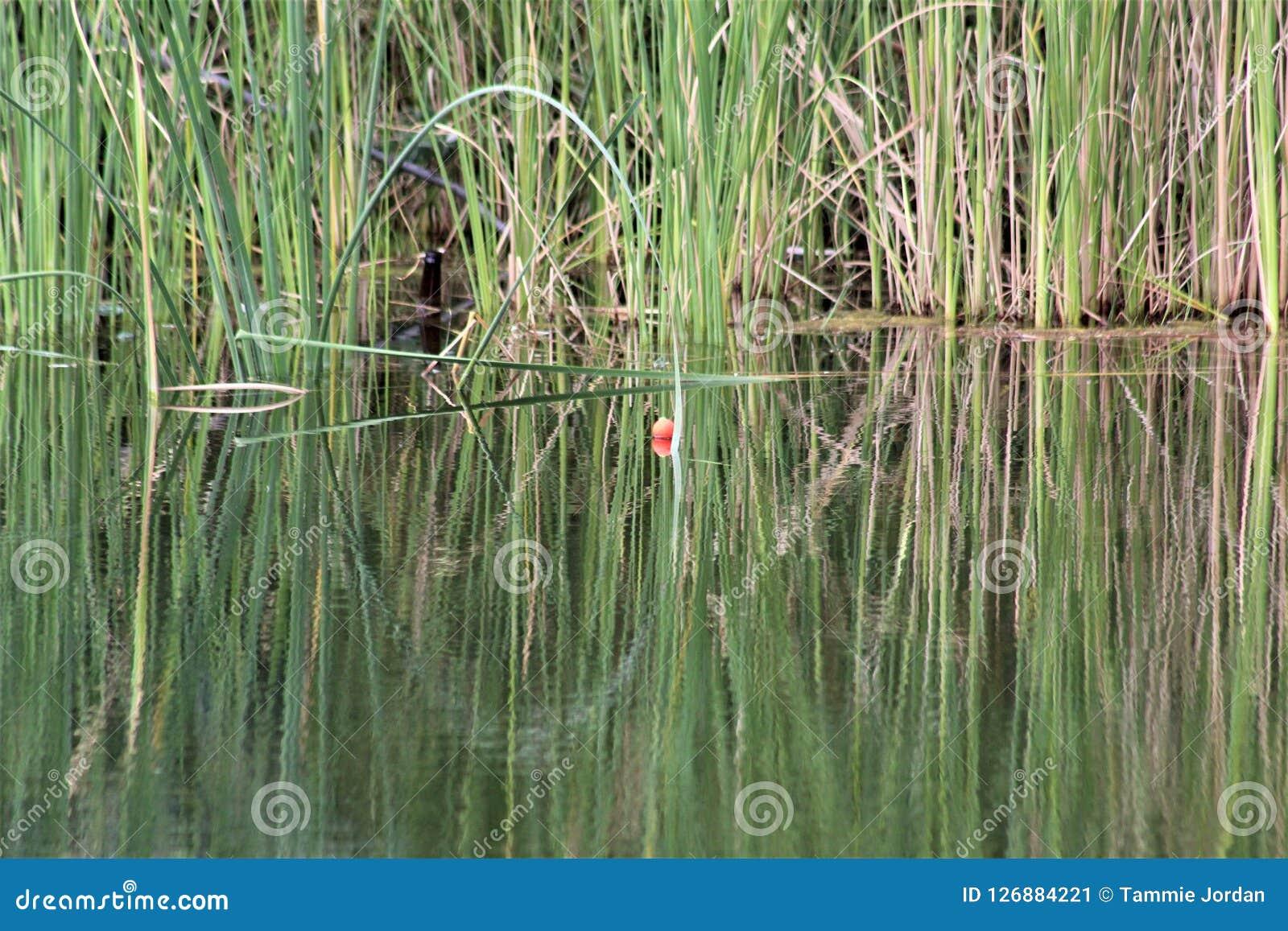 Vergeten Visserij Bobber in de Grassen
