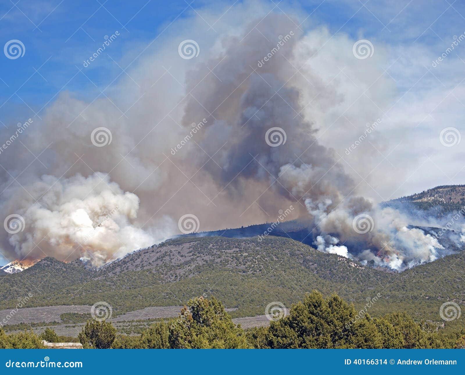 Verheerendes Feuer