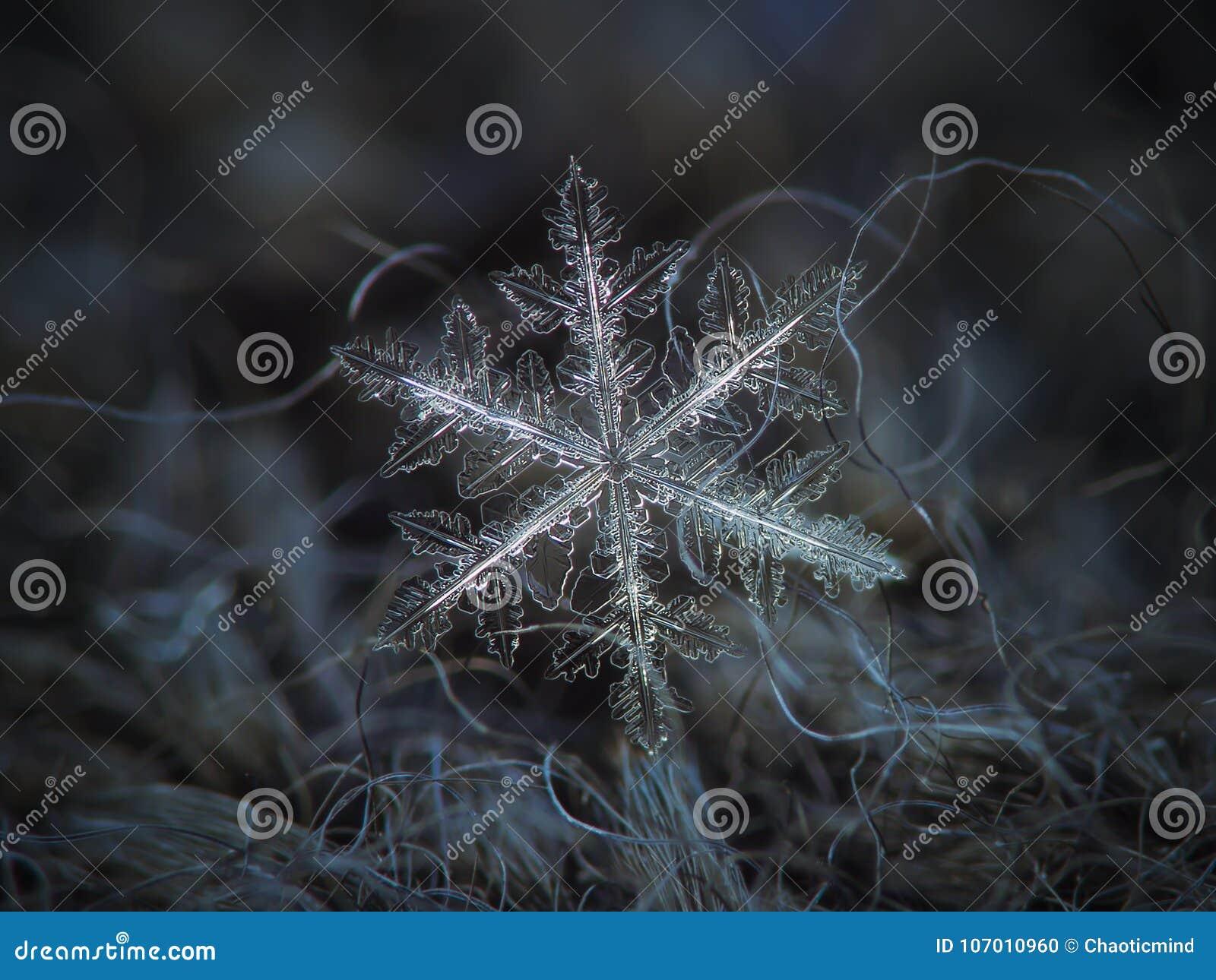Verklig snöflinga som glöder på mörker texturerad bakgrund