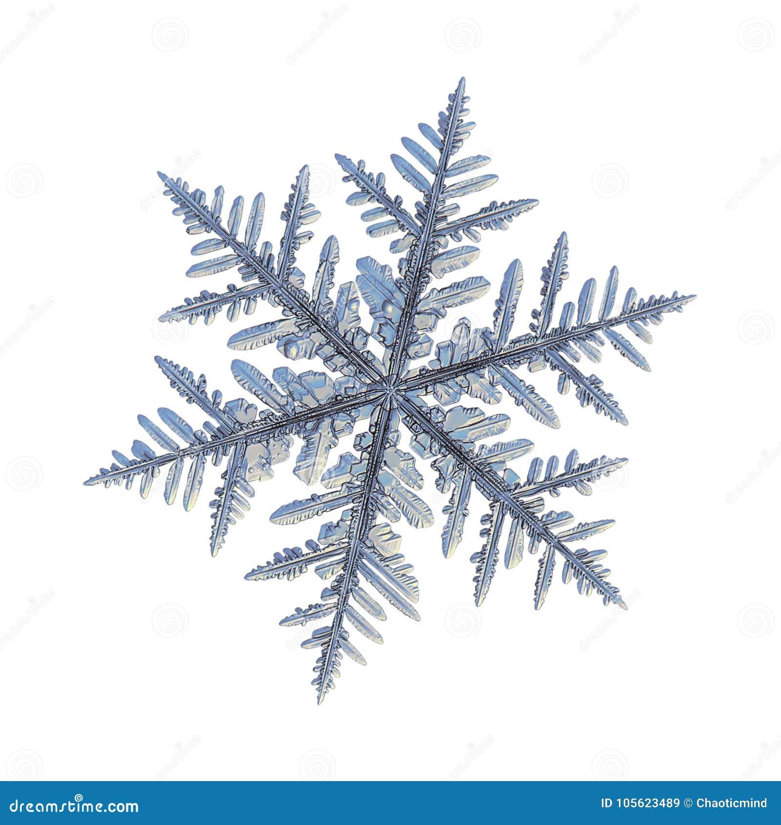 Verklig snöflinga som isoleras på vit bakgrund