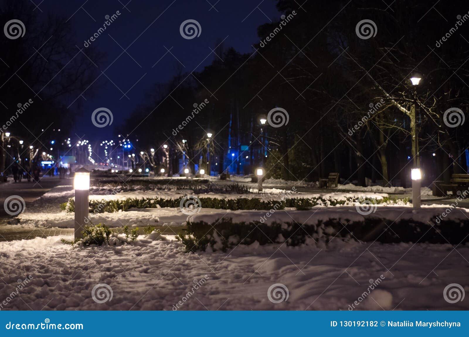 Verlassener Park im Winter nachts Snow-Covered Landschaft