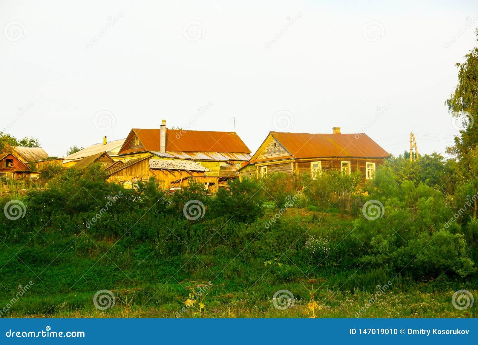 Verlaten oude blokhuizen in het bos