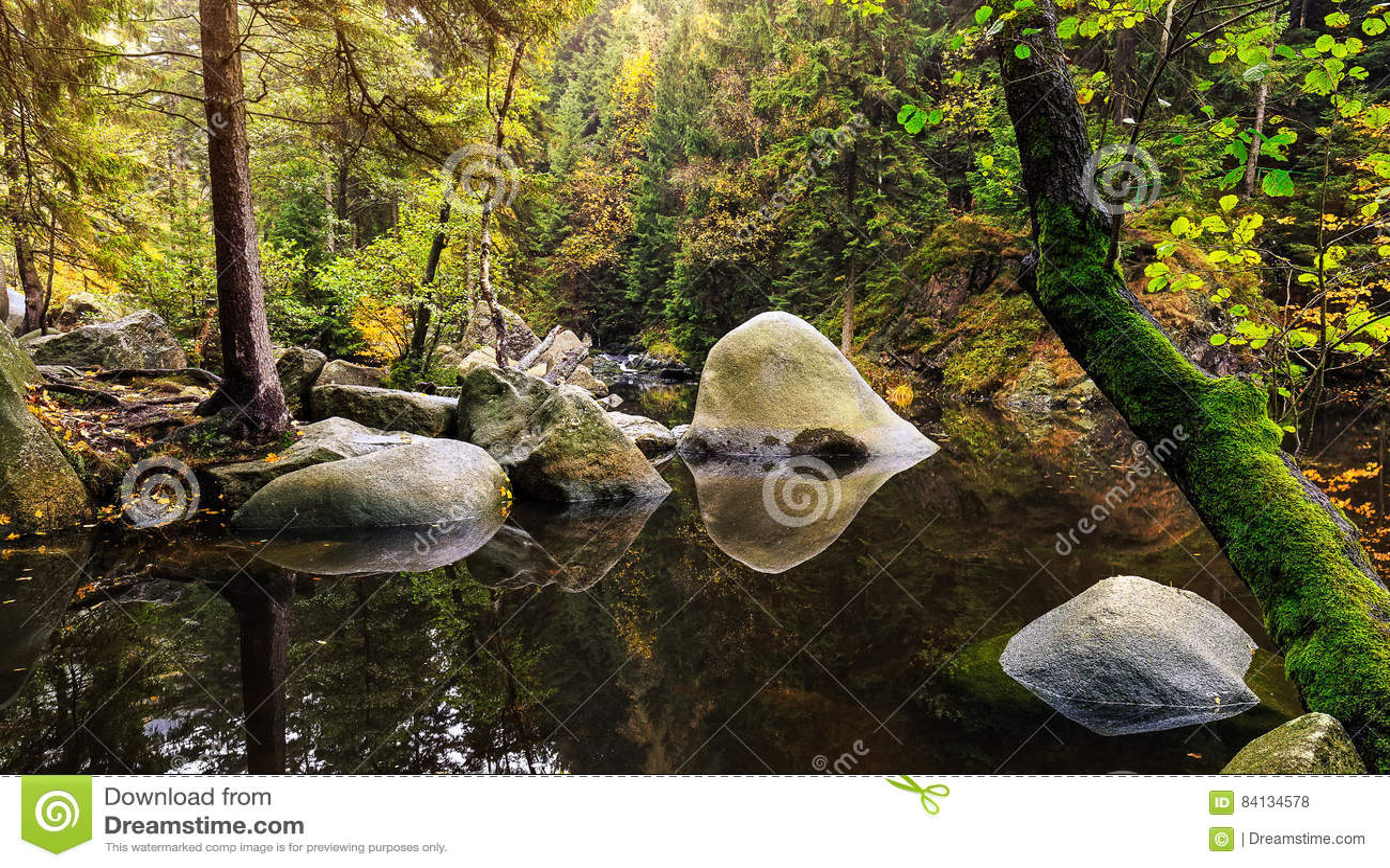 Verlobungsinsel In The River Oker Stock Photo - Image of