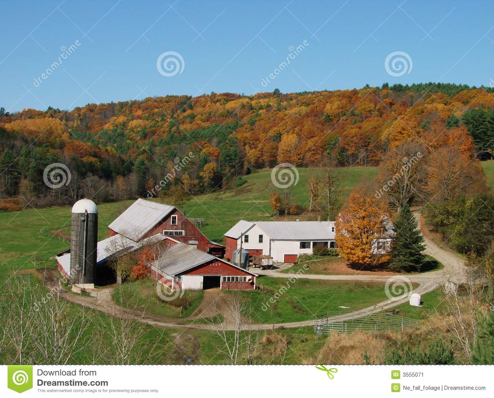vermont dairy farm stock image   image 3555071