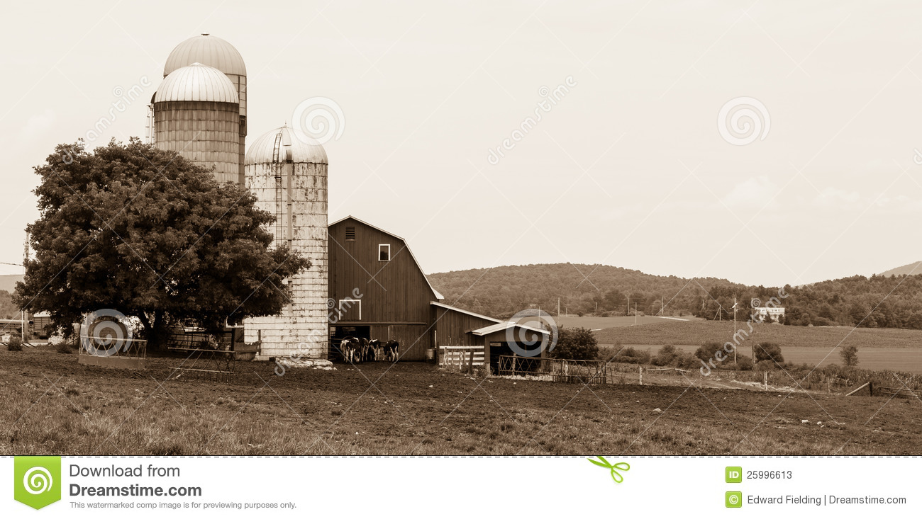 Vermont dairy farm scene in black and white