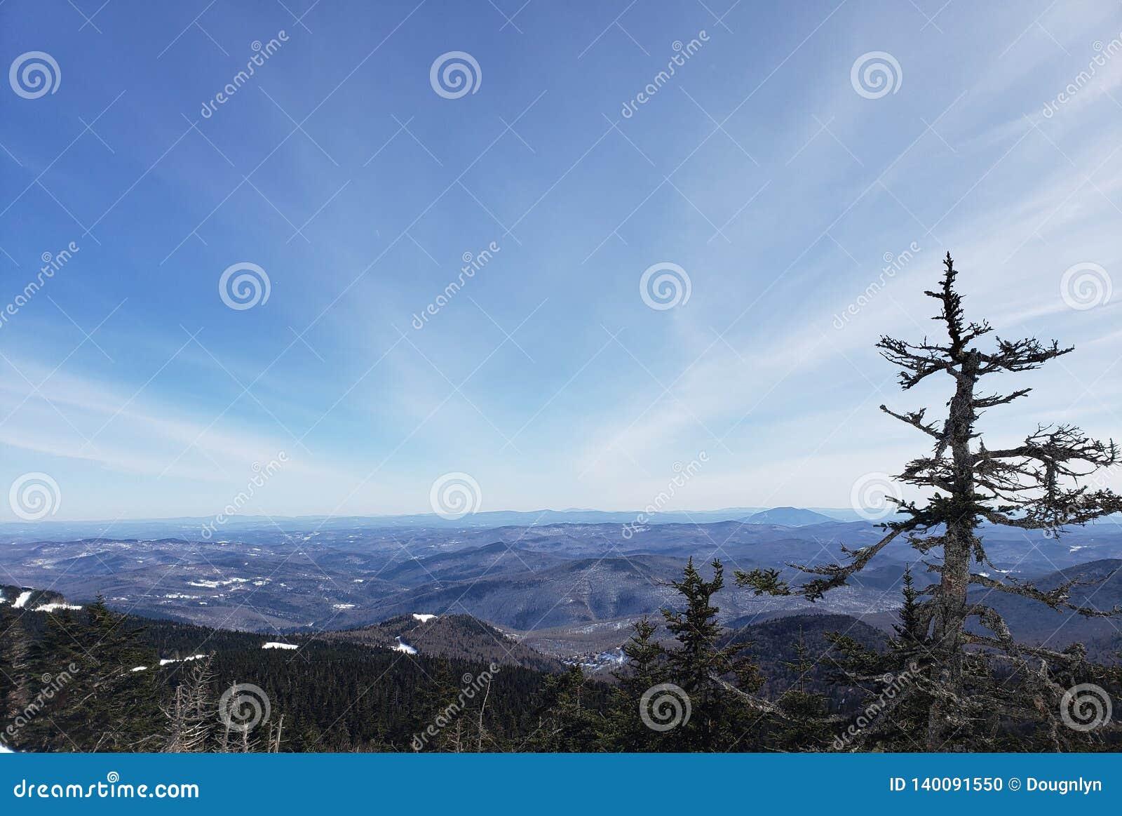 Vermont dukty