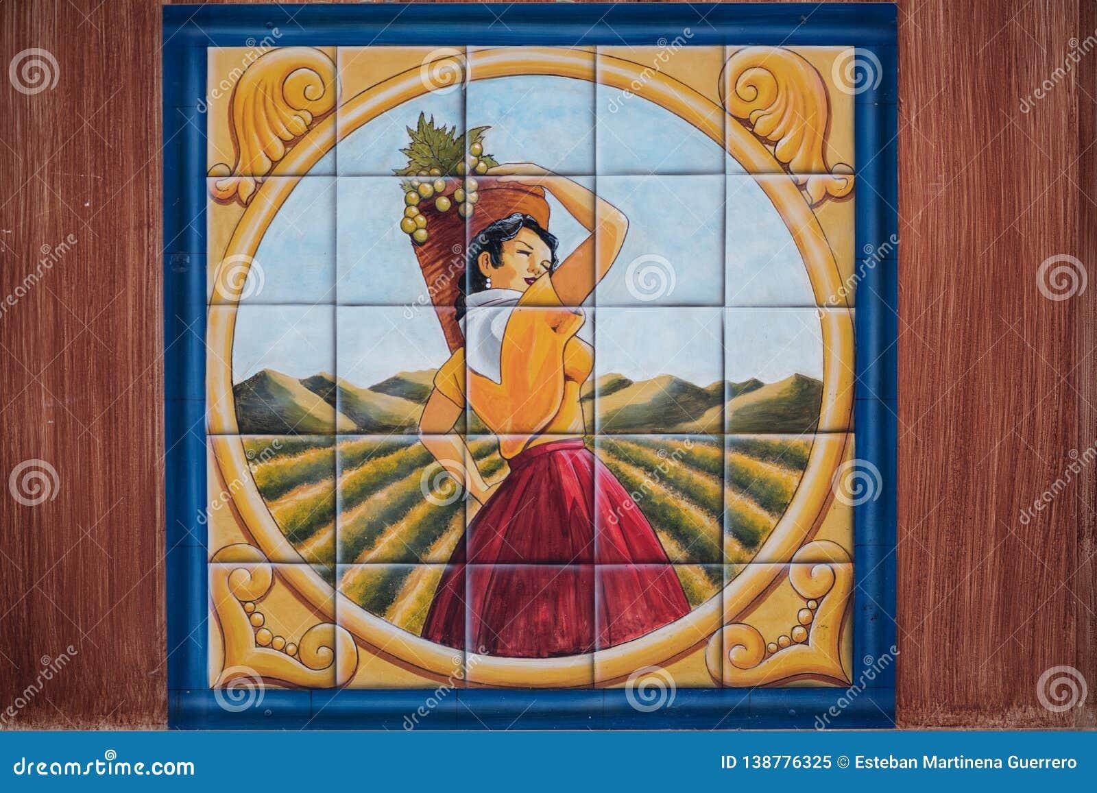 Verniciatura della donna che seleziona l uva in mattonelle attinte una vigna