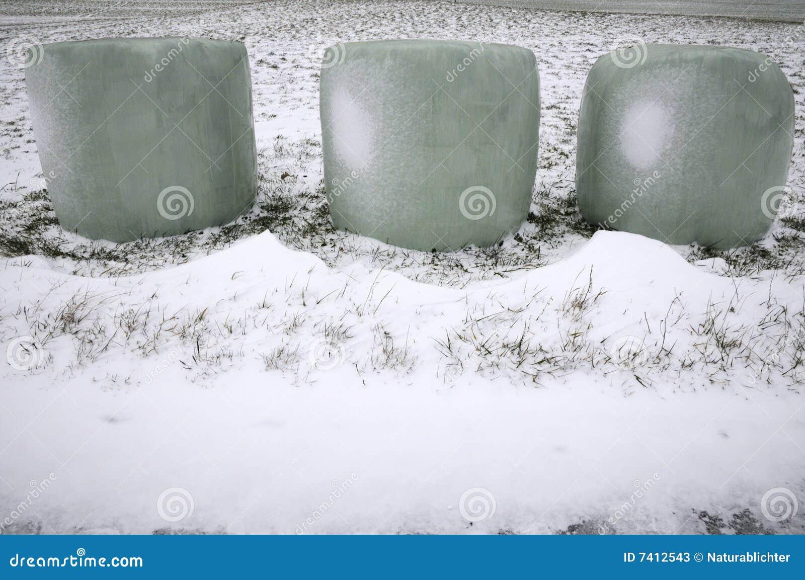Verpakte hooibalen in sneeuw