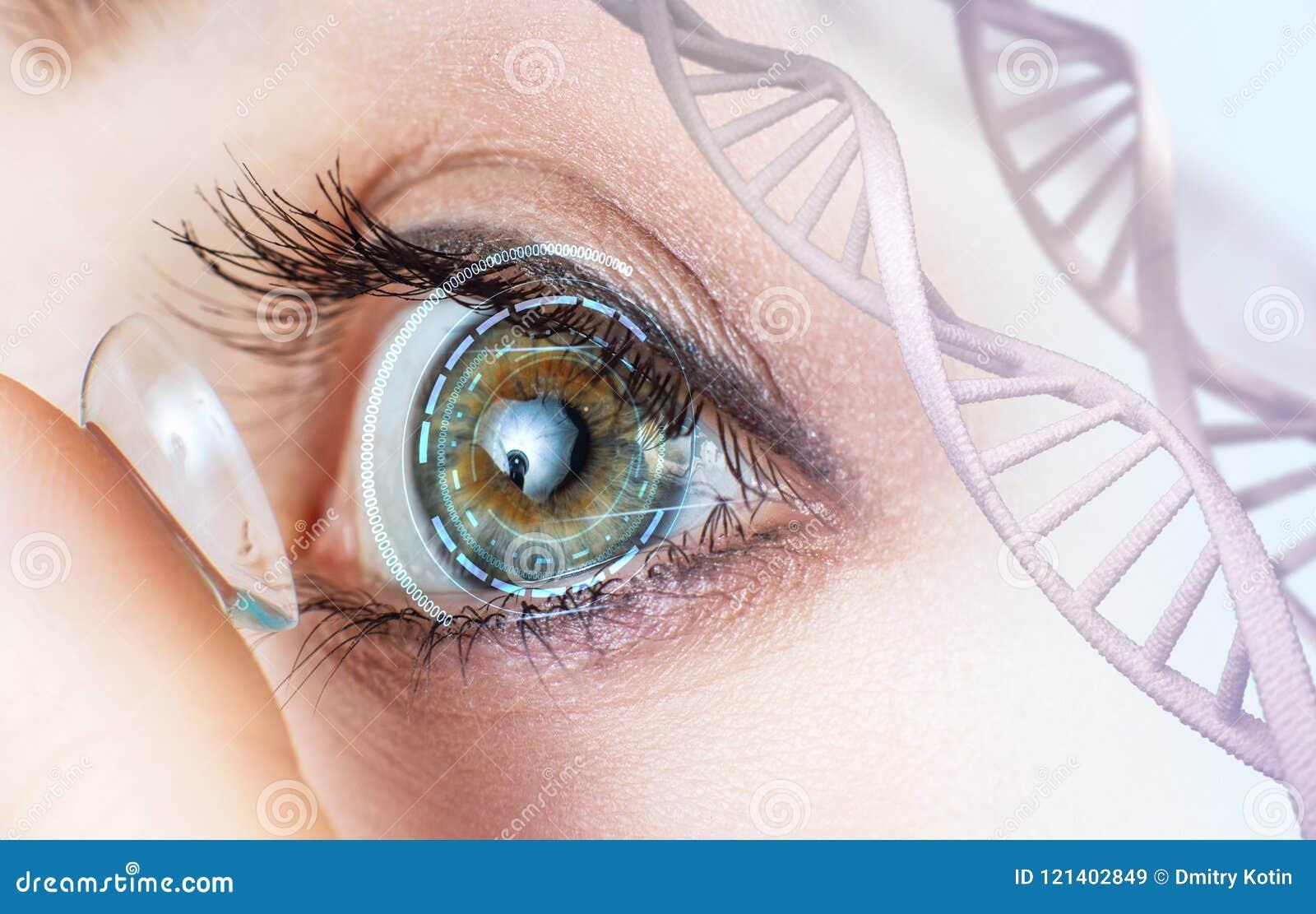 Verre de contact de port de femme parmi des tiges d ADN