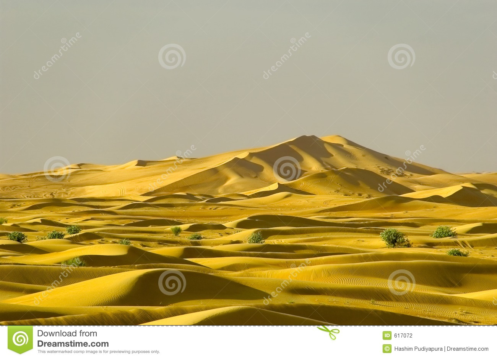 Verre duinen