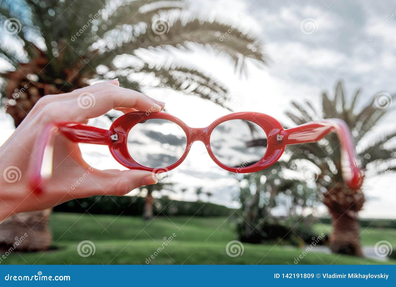 Verres de soleil de palmiers Concept de vacances la fille tient les lunettes de soleil rouges à la mode dans sa main et dispose à