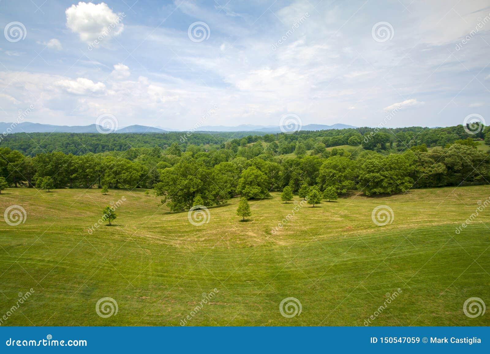 Vers gemaaid gebied met forst en verre bergen op achtergrond onder heldere blauwe hemel