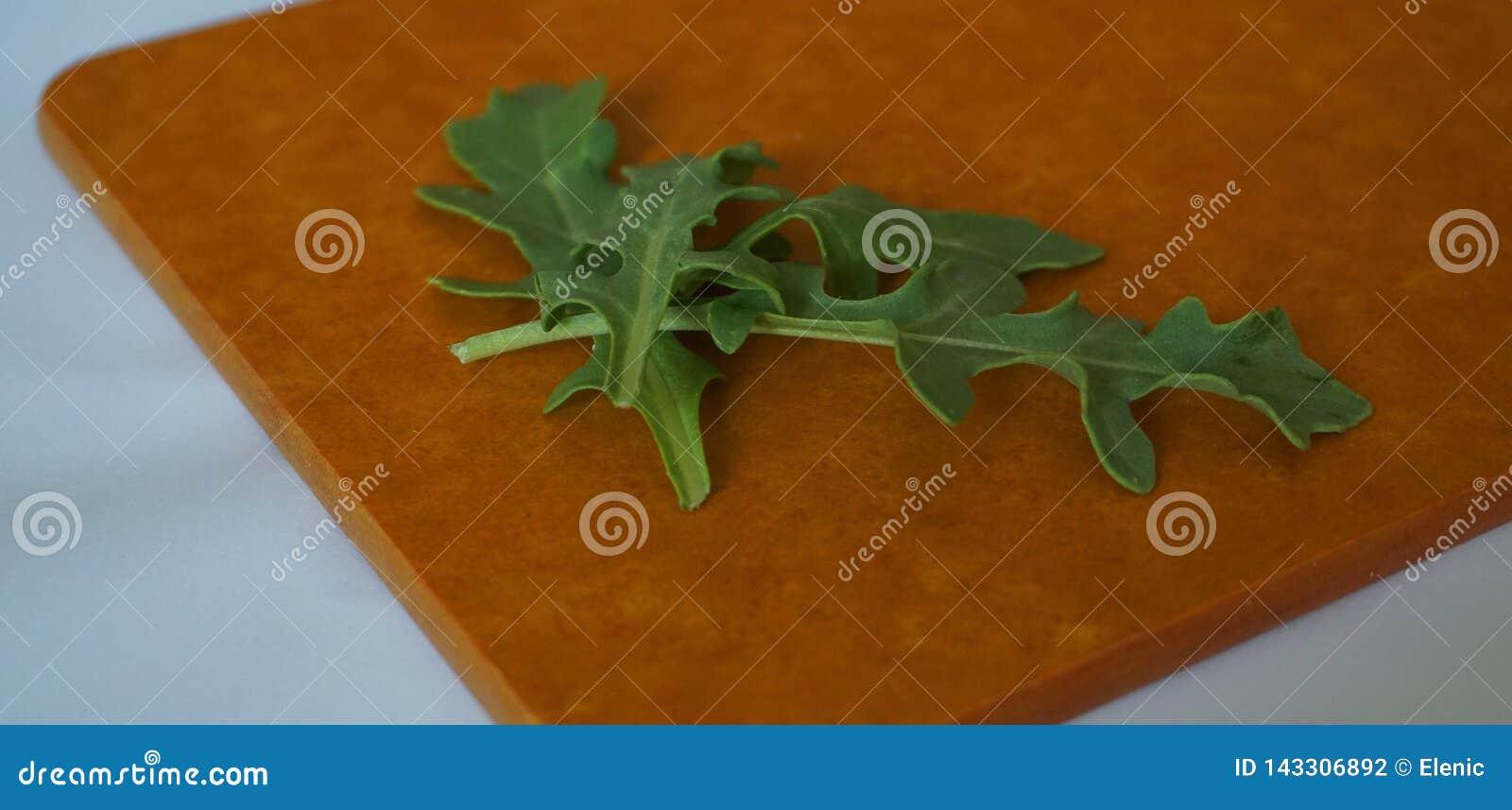 Vers groen organisch arugulablad op houtvezelplaat