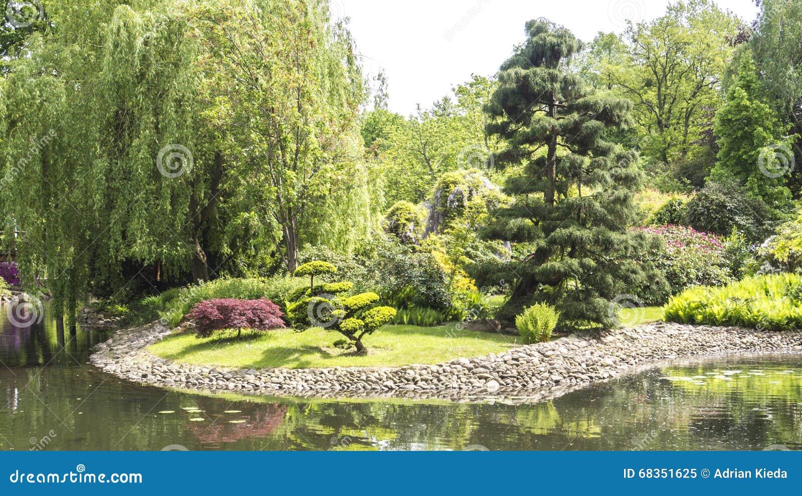 Verscheidenheid van bomen in een tuin over een nog vijver stock foto afbeelding 68351625 - Foto van tuin vijver ...